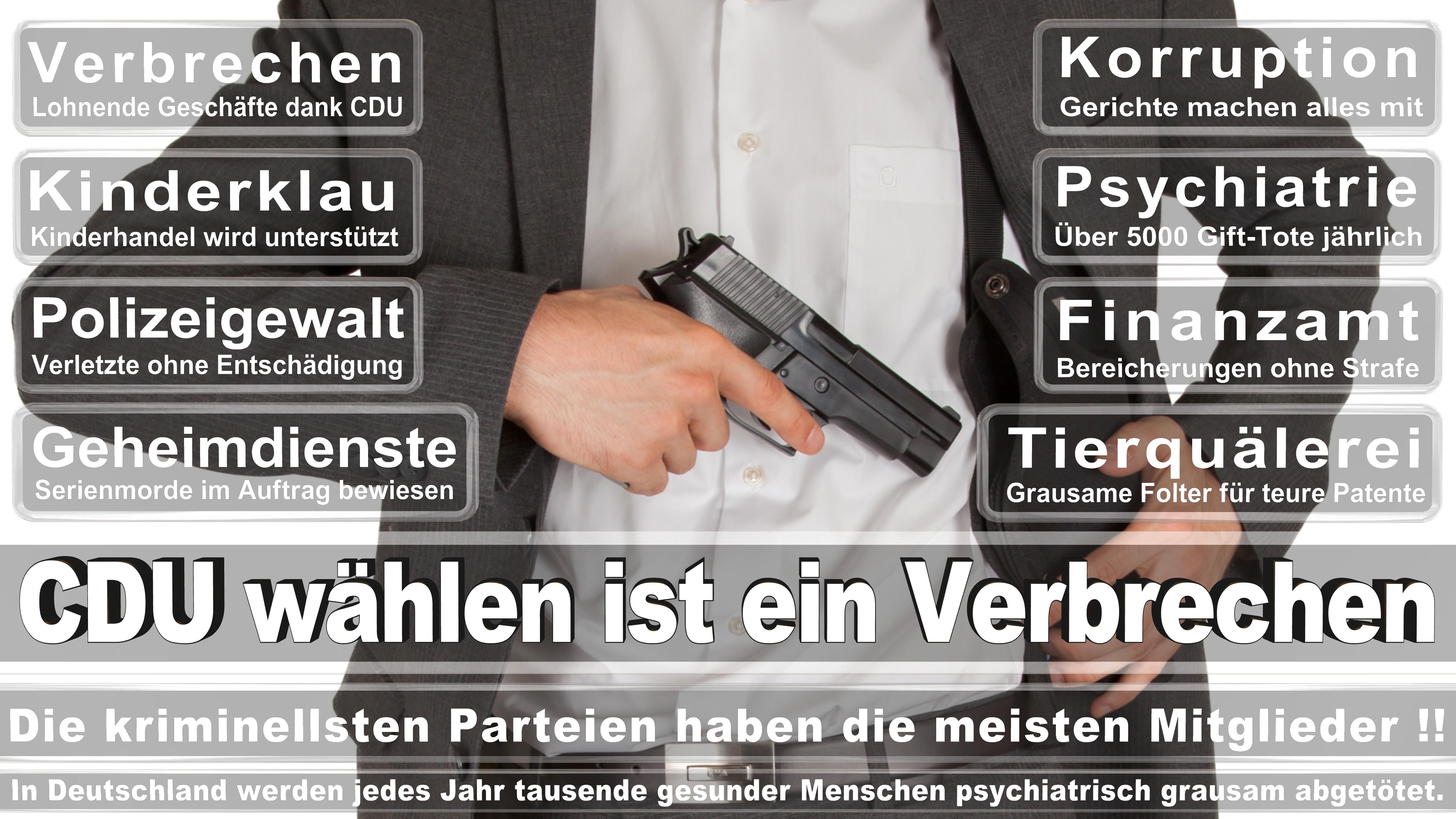Albert Stegemann Vorsitzender CDU CSU Politiker