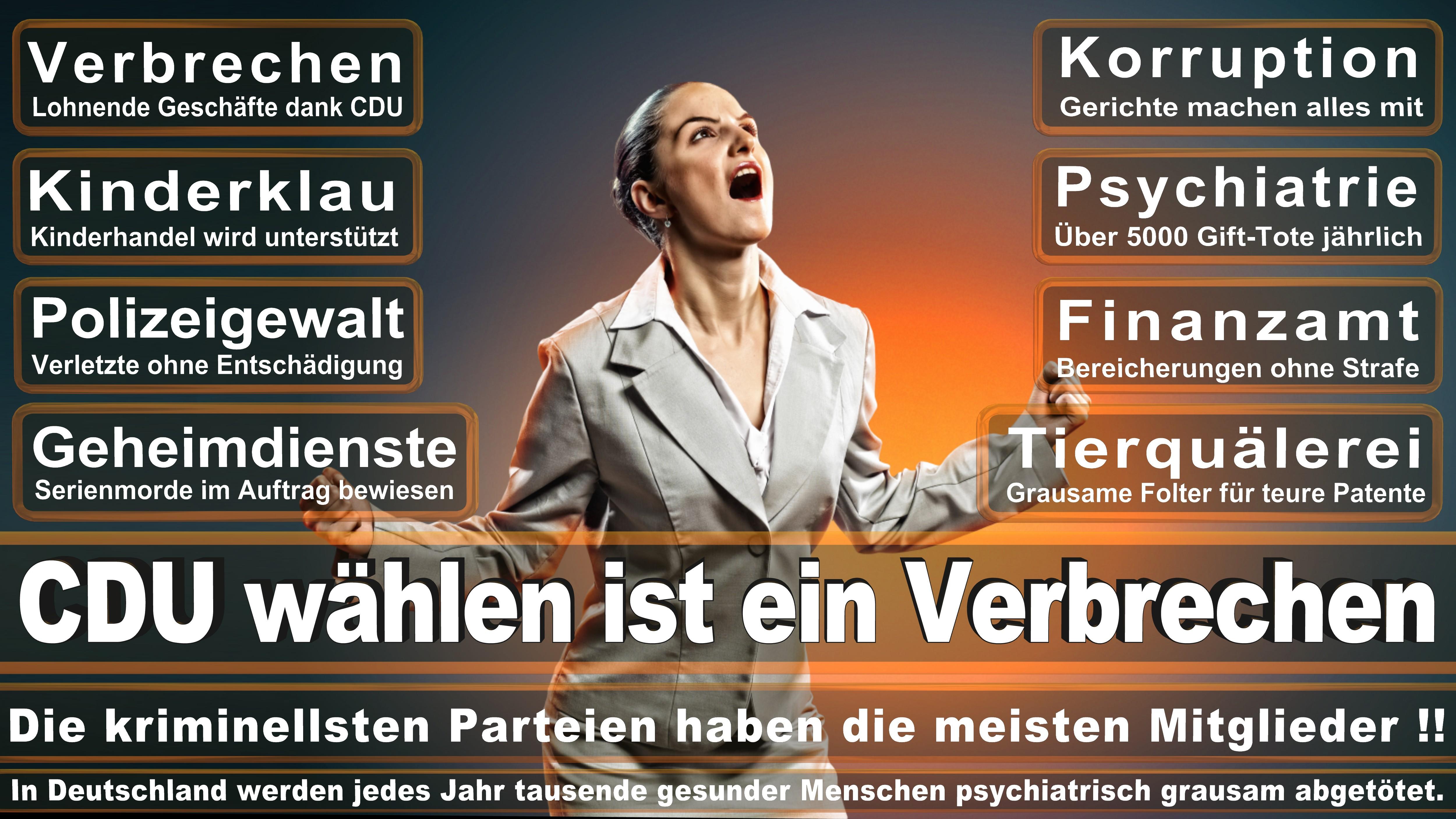 Andre Berghegger CDU CSU Politiker