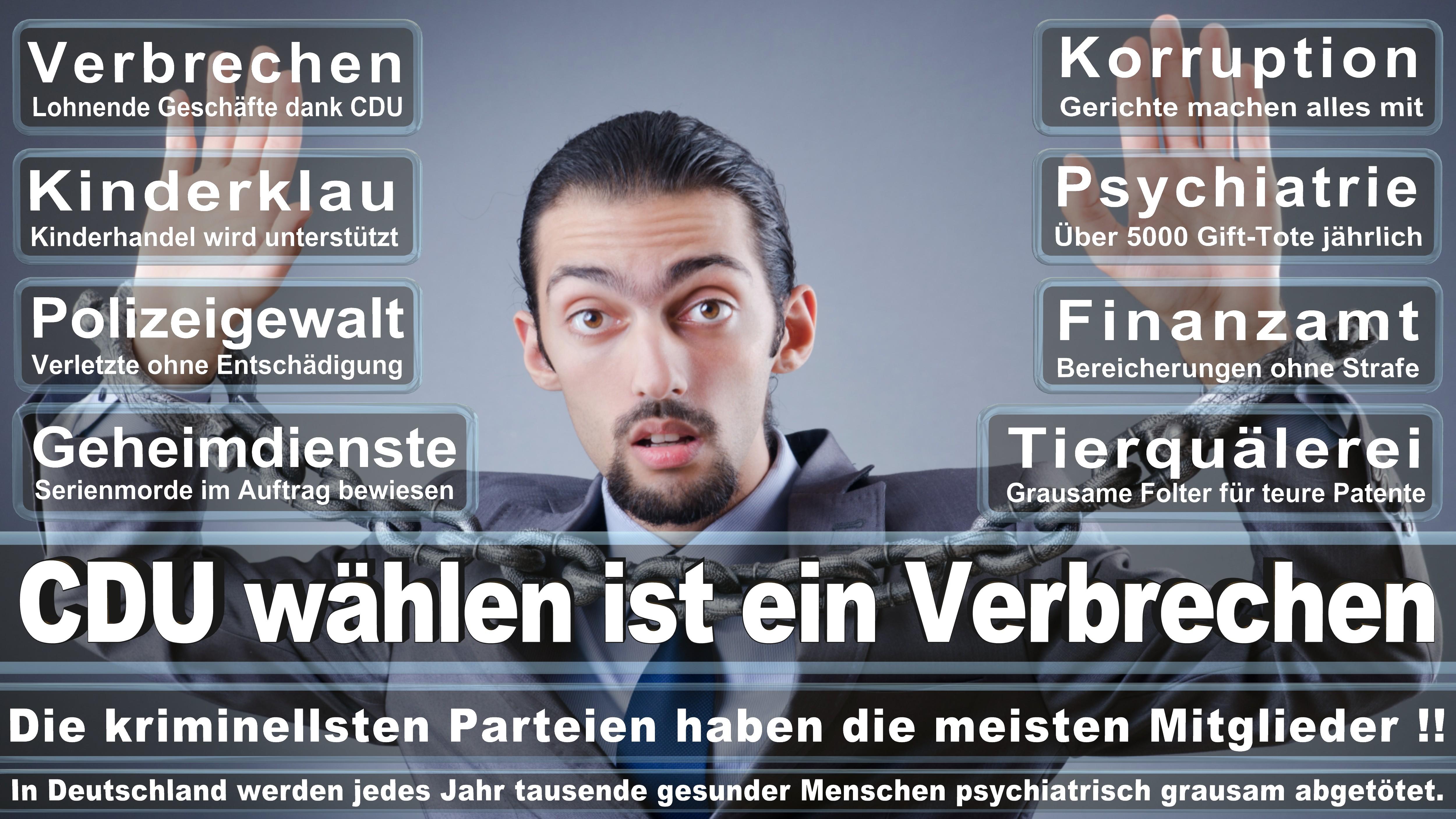 Andreas G Lämmel CDU CSU Politiker