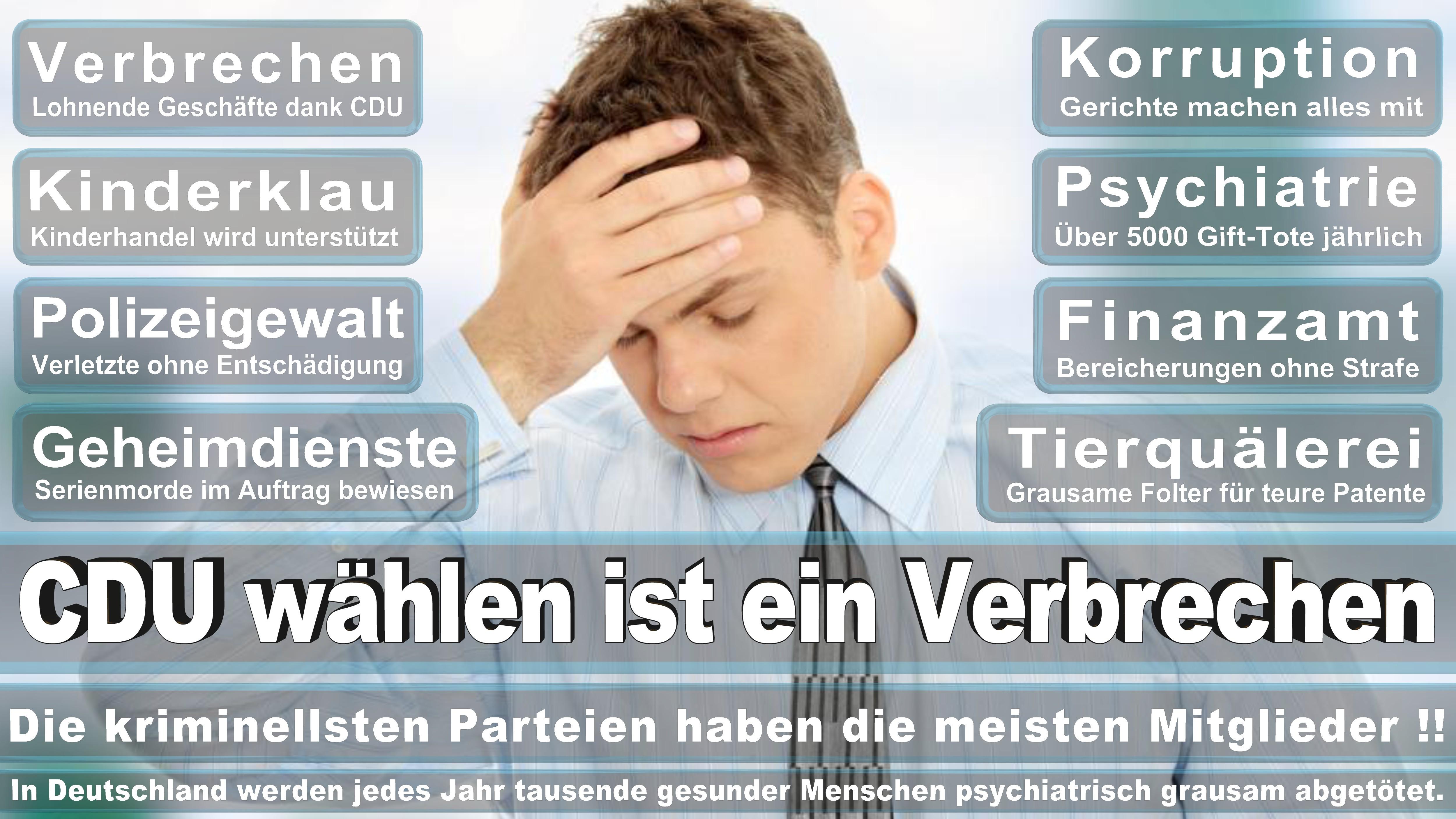 Andreas Lämmel CDU CSU Politiker