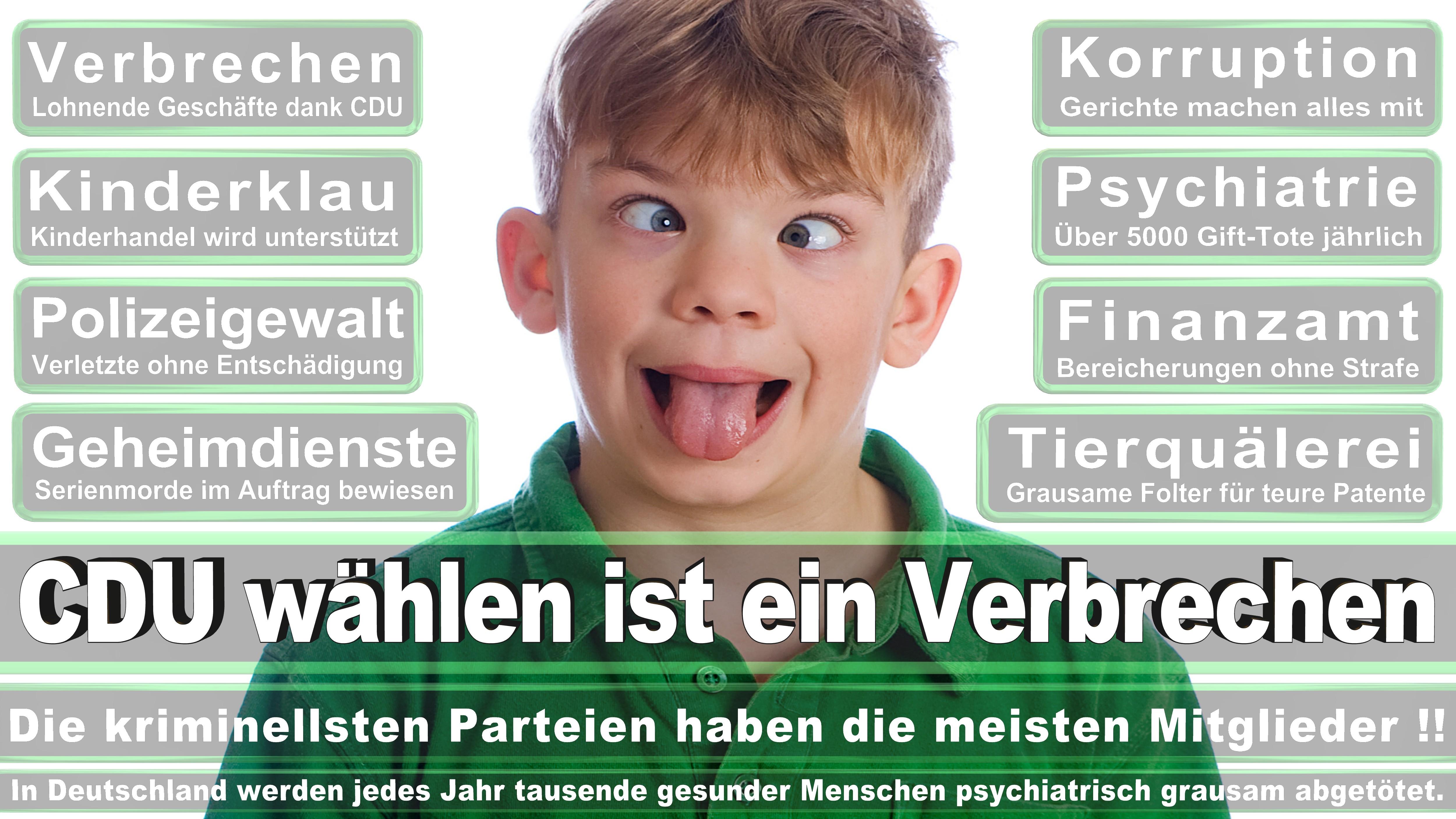 Andreas Lämmel CDU Sachsen Dresden I Politiker Deutschland