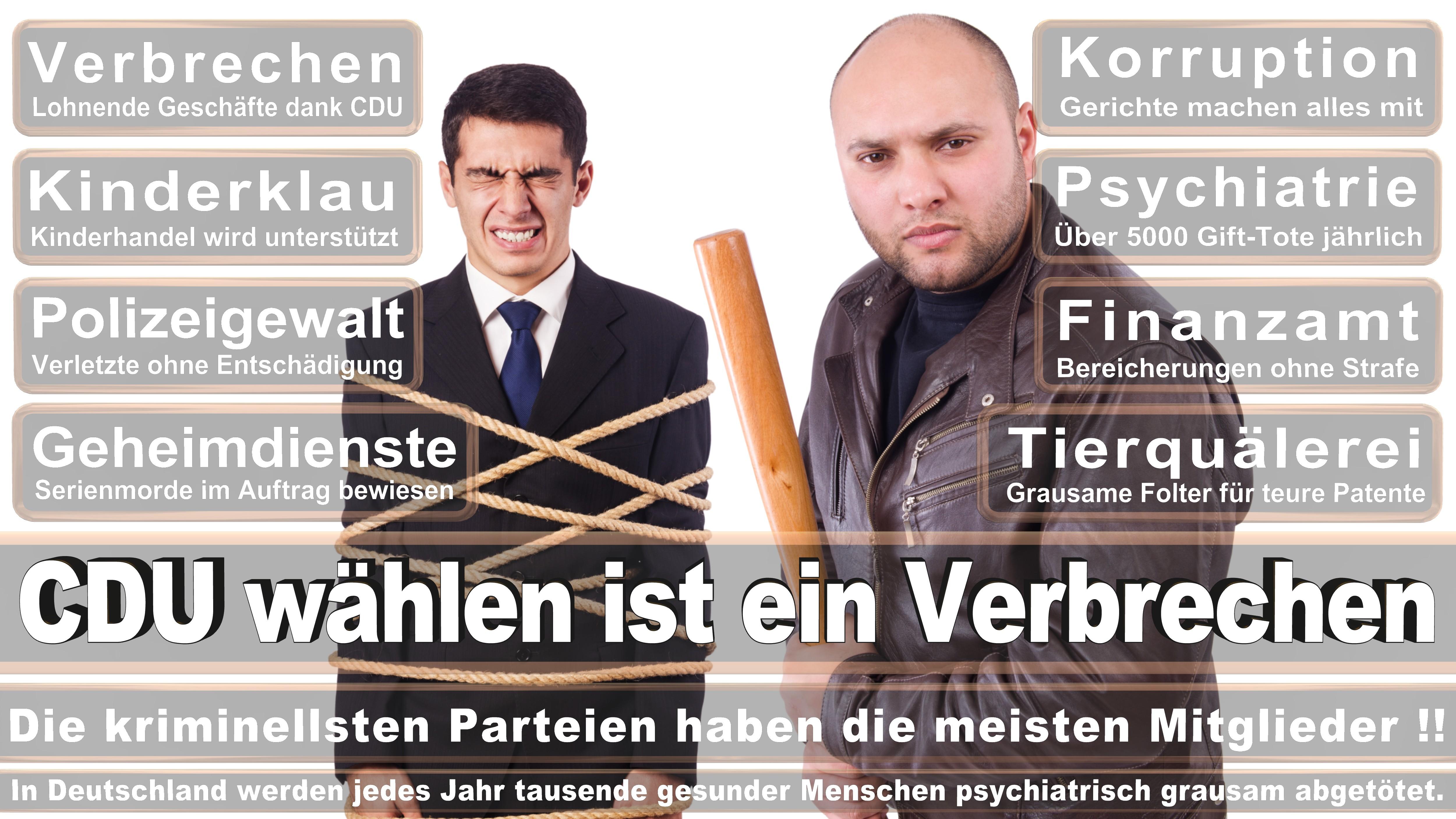 Andrej Hunko DIE LINKE Nordrhein Westfalen Politiker Deutschland