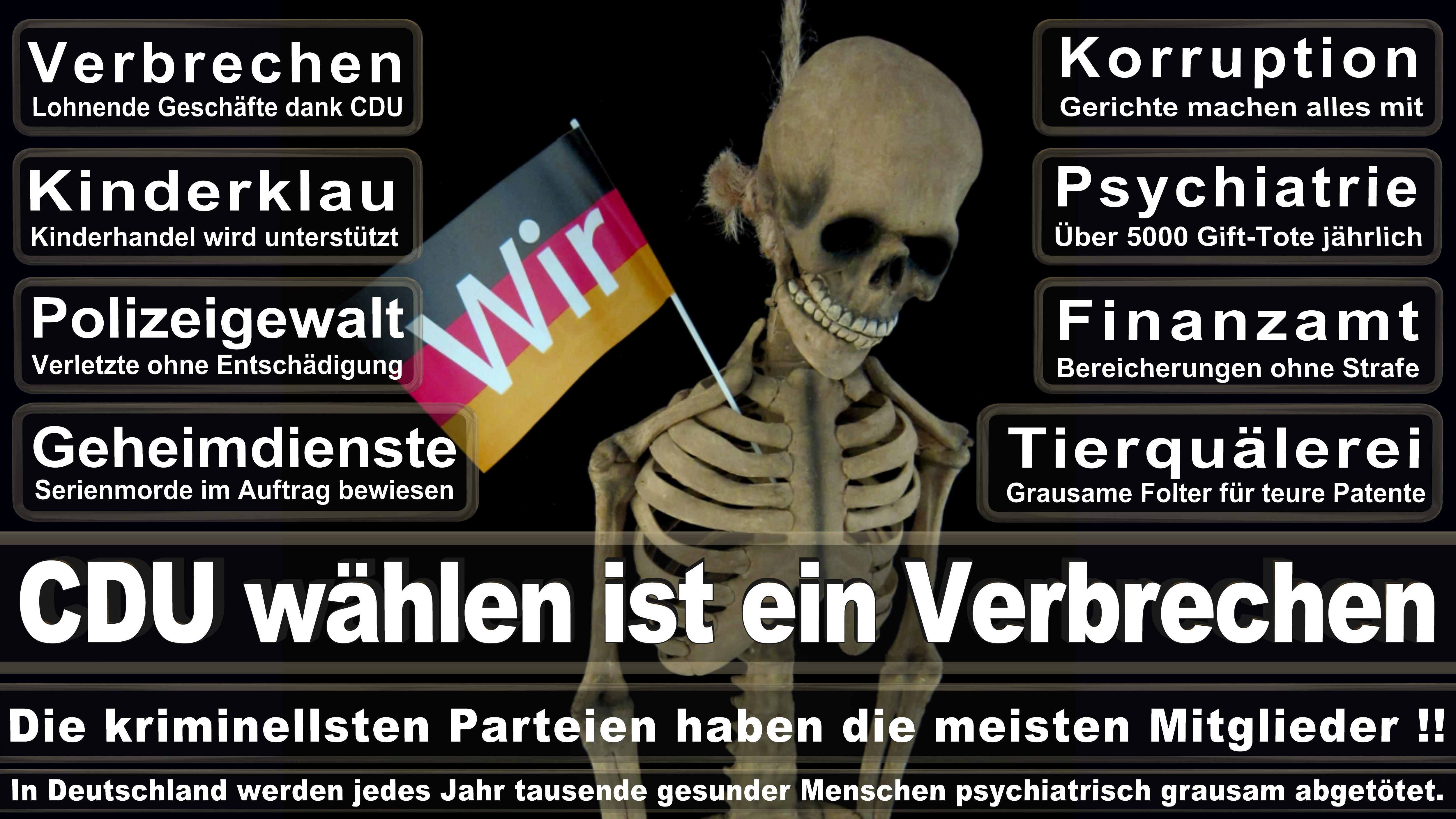 Annette Widmann Mauz CDU CSU Politiker