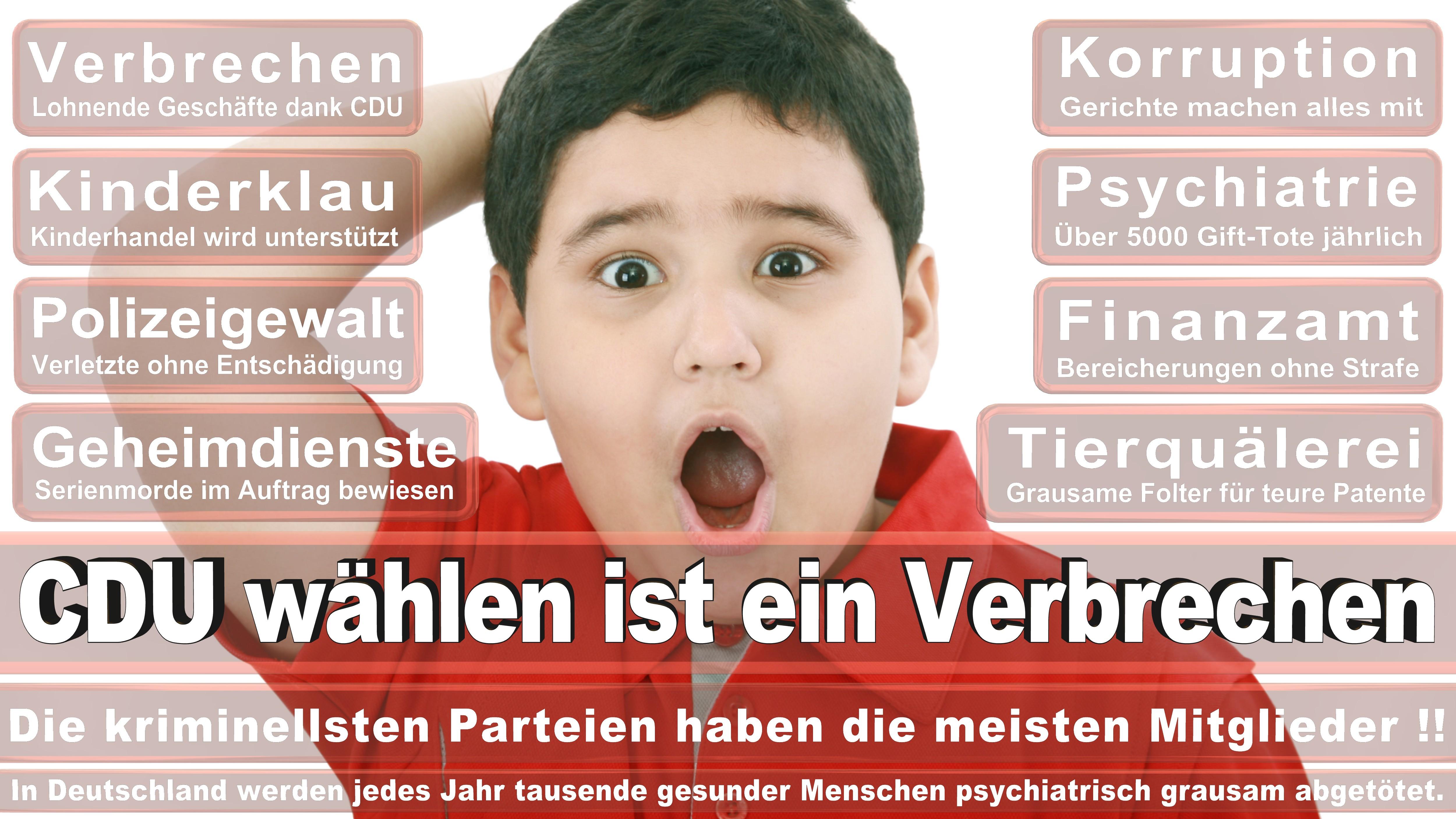 Antje Tillmann CDU CSU Politiker
