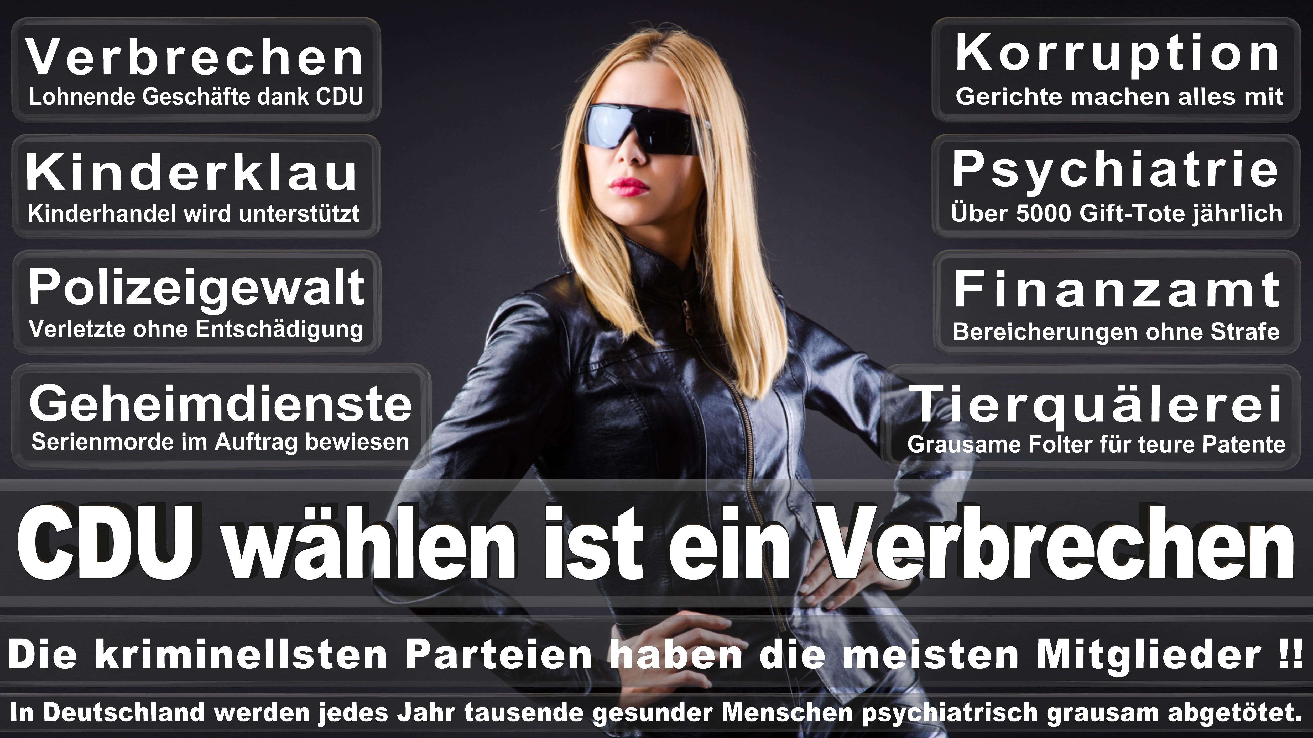 Astrid Grotelüschen CDU CSU Politiker