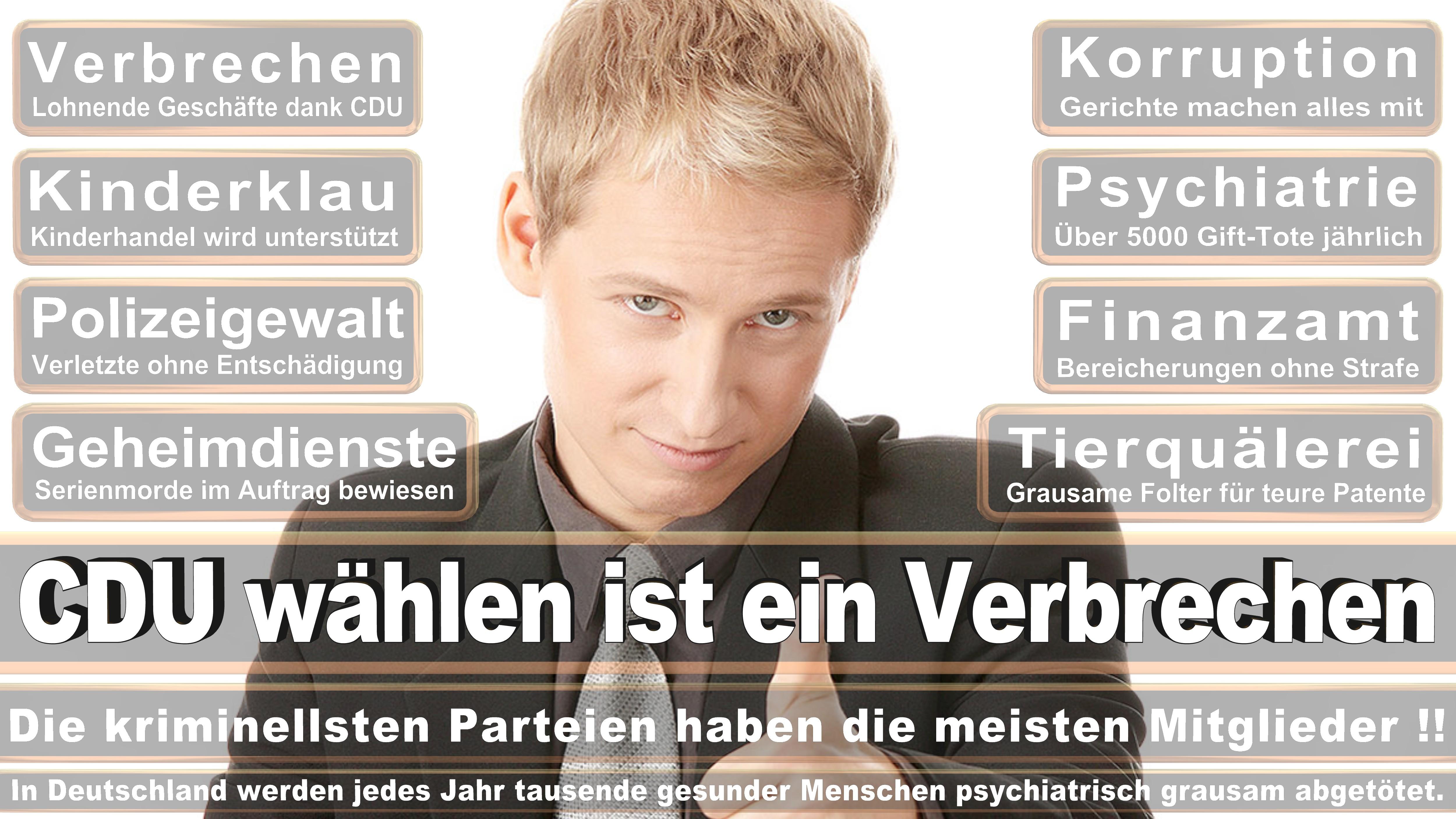 Axel Knoerig CDU CSU Politiker