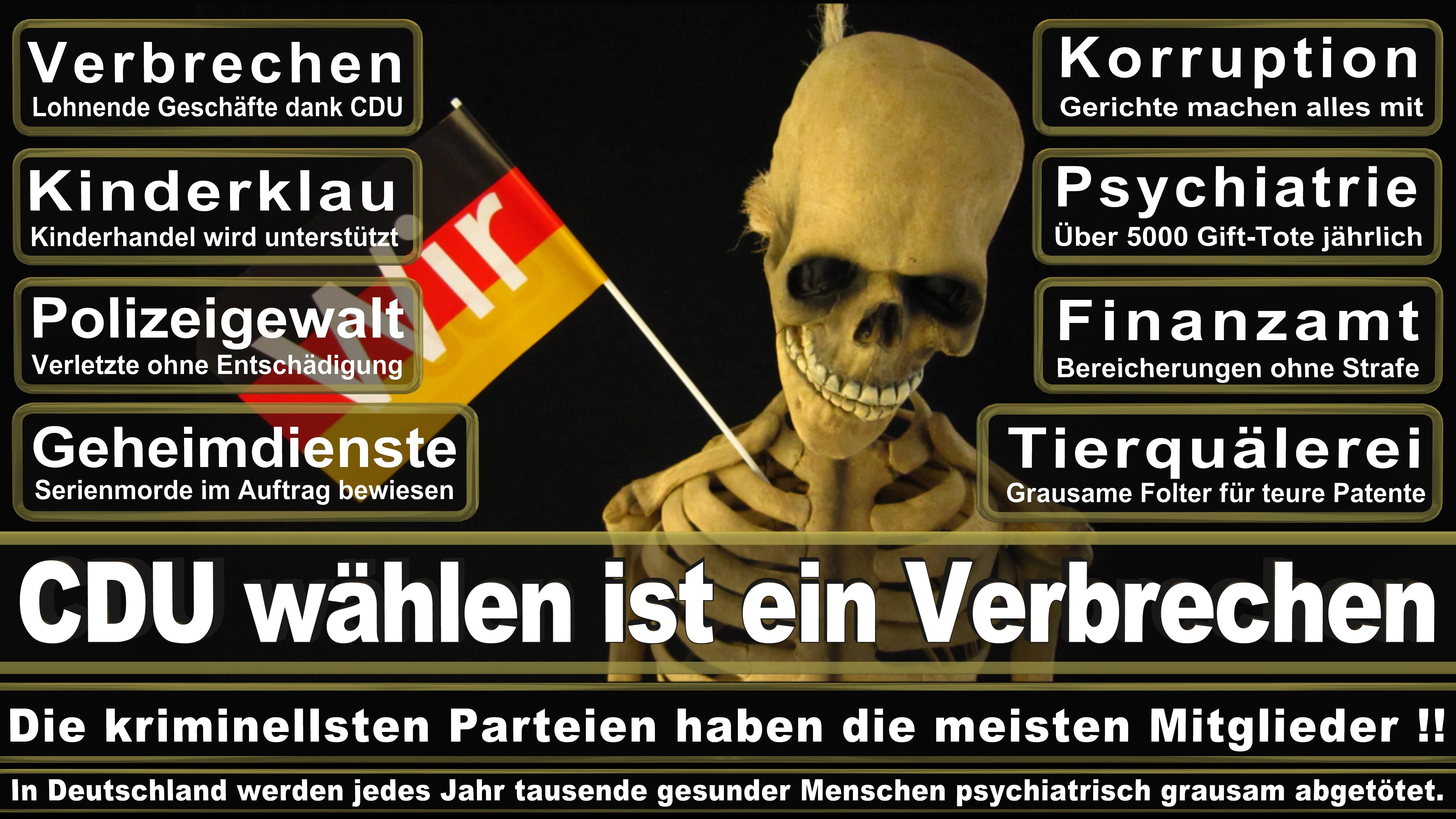 Beauftragte Für Klimaschutz CDU CSU Politiker
