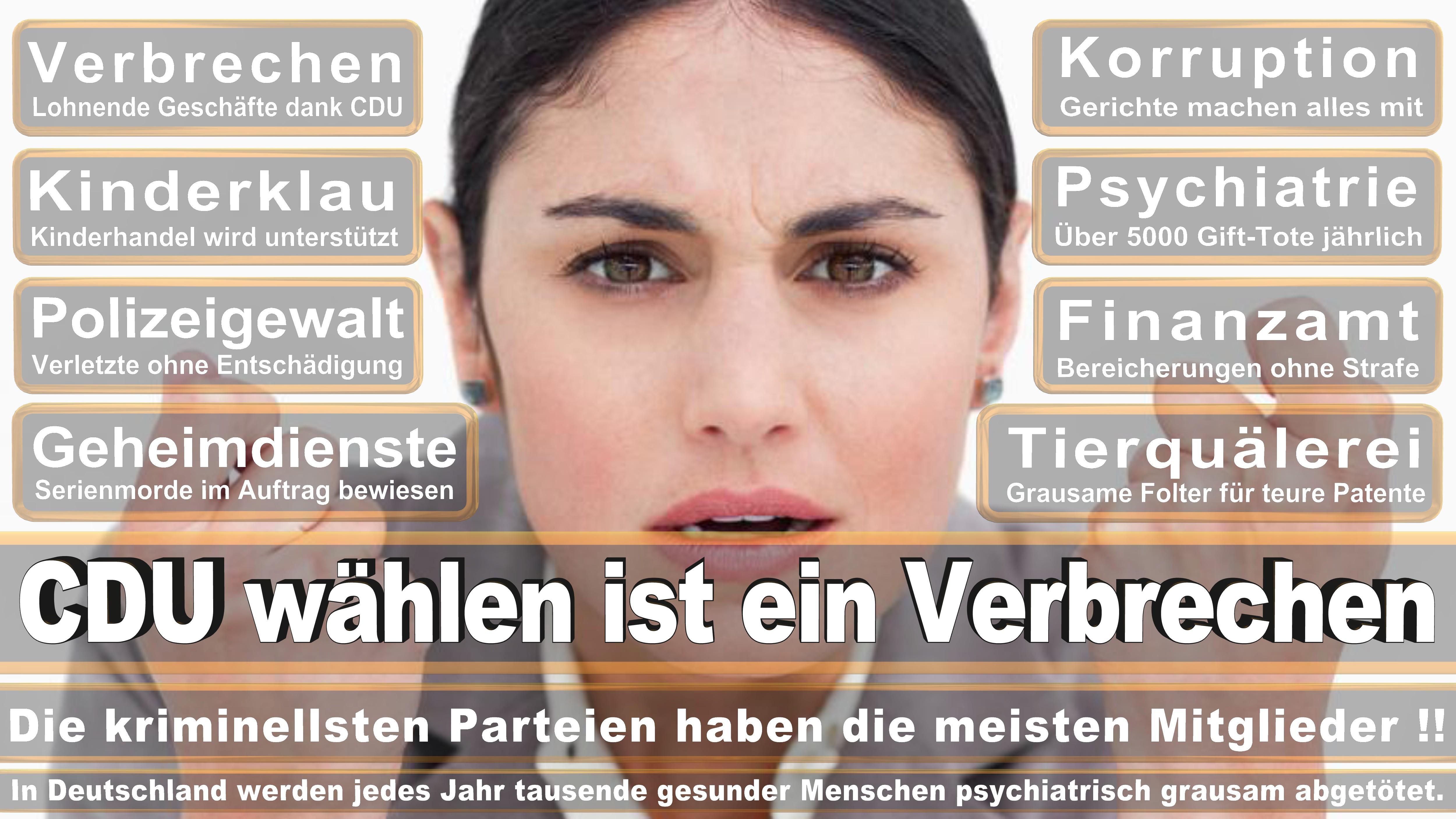 Bettina Magarethe Wiesmann CDU CSU Politiker