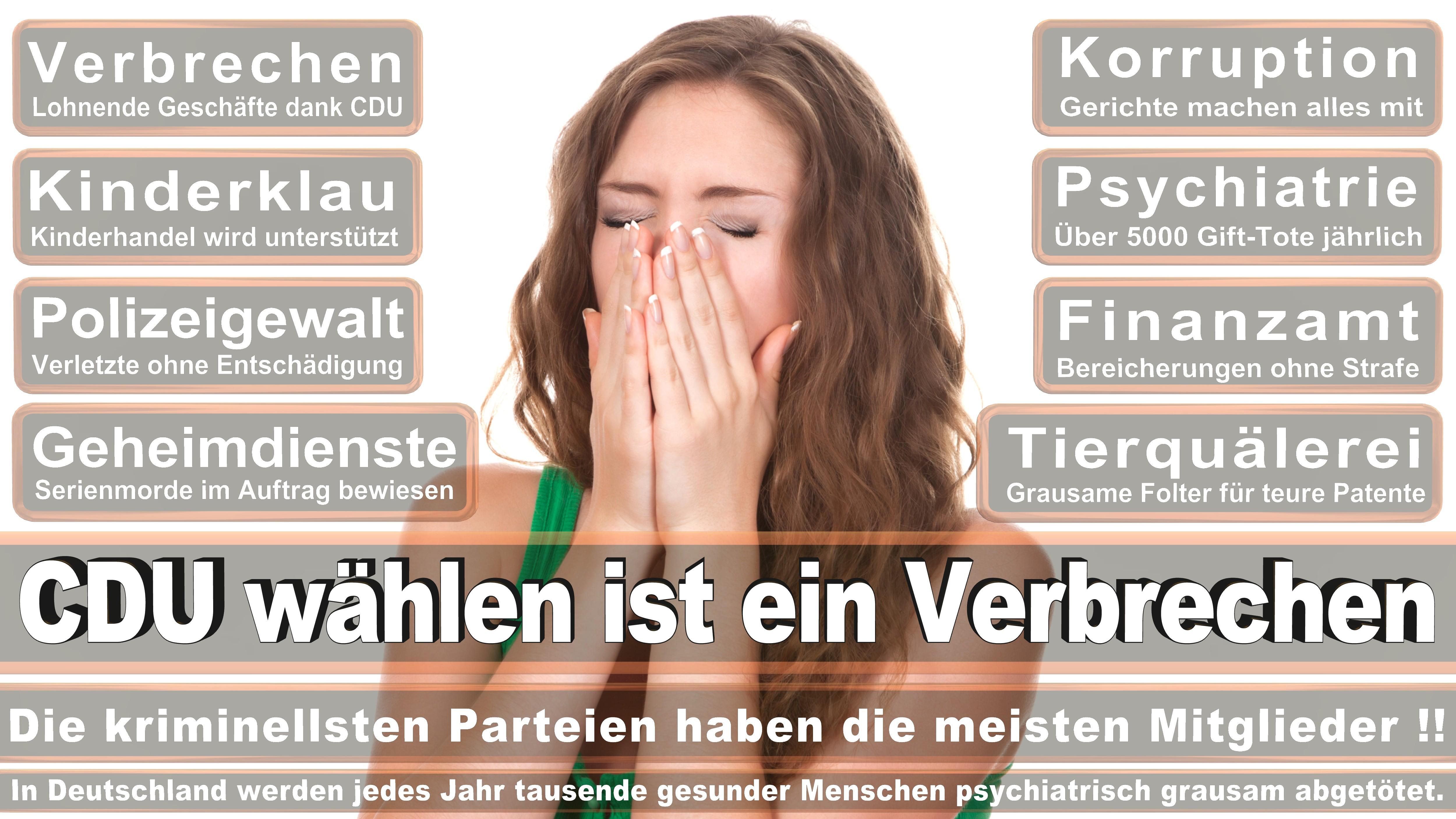 Birgit Kömpel SPD Hessen Politiker Deutschland