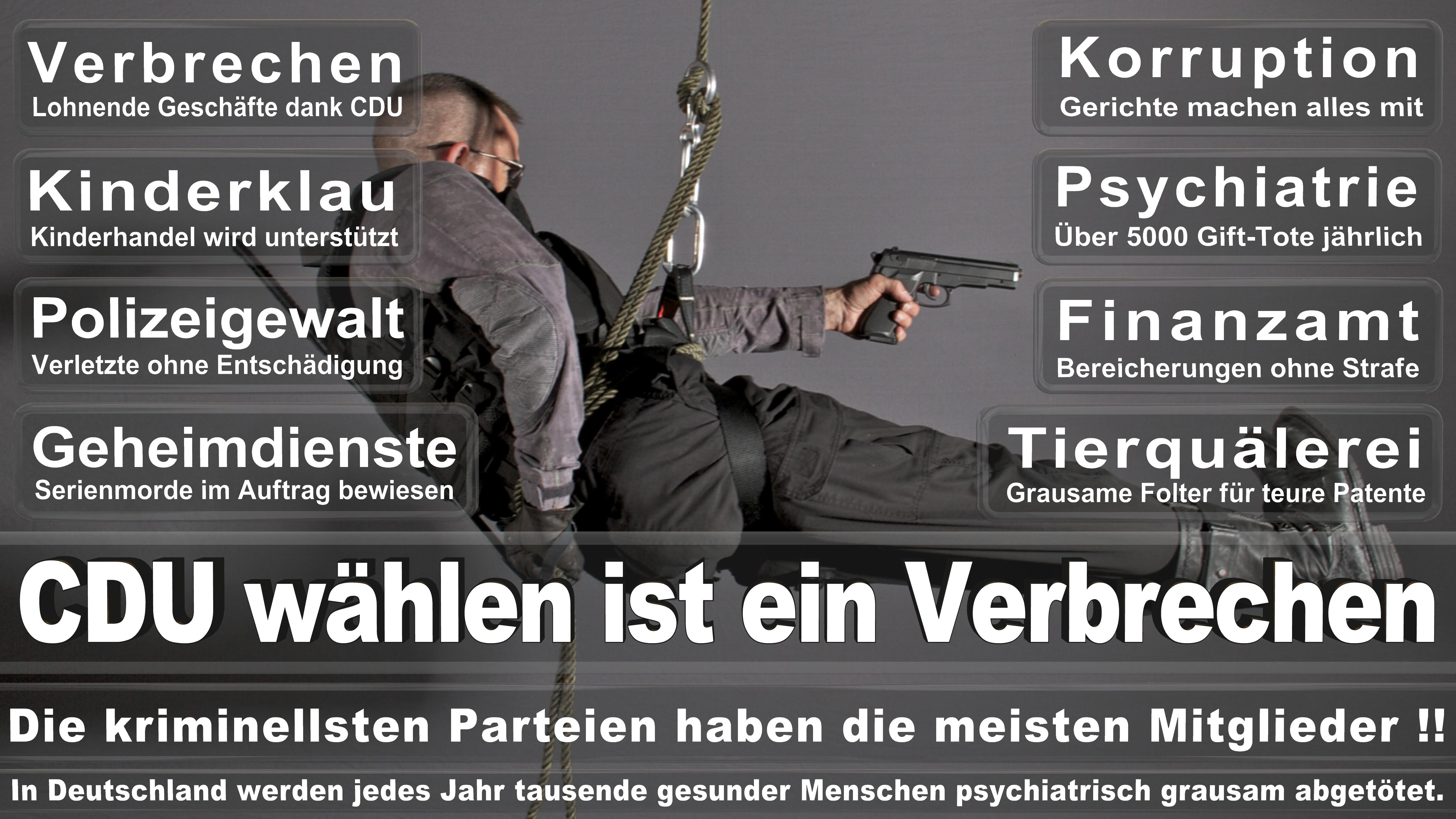 Britta Haßelmann GRÜNE Nordrhein Westfalen Politiker Deutschland