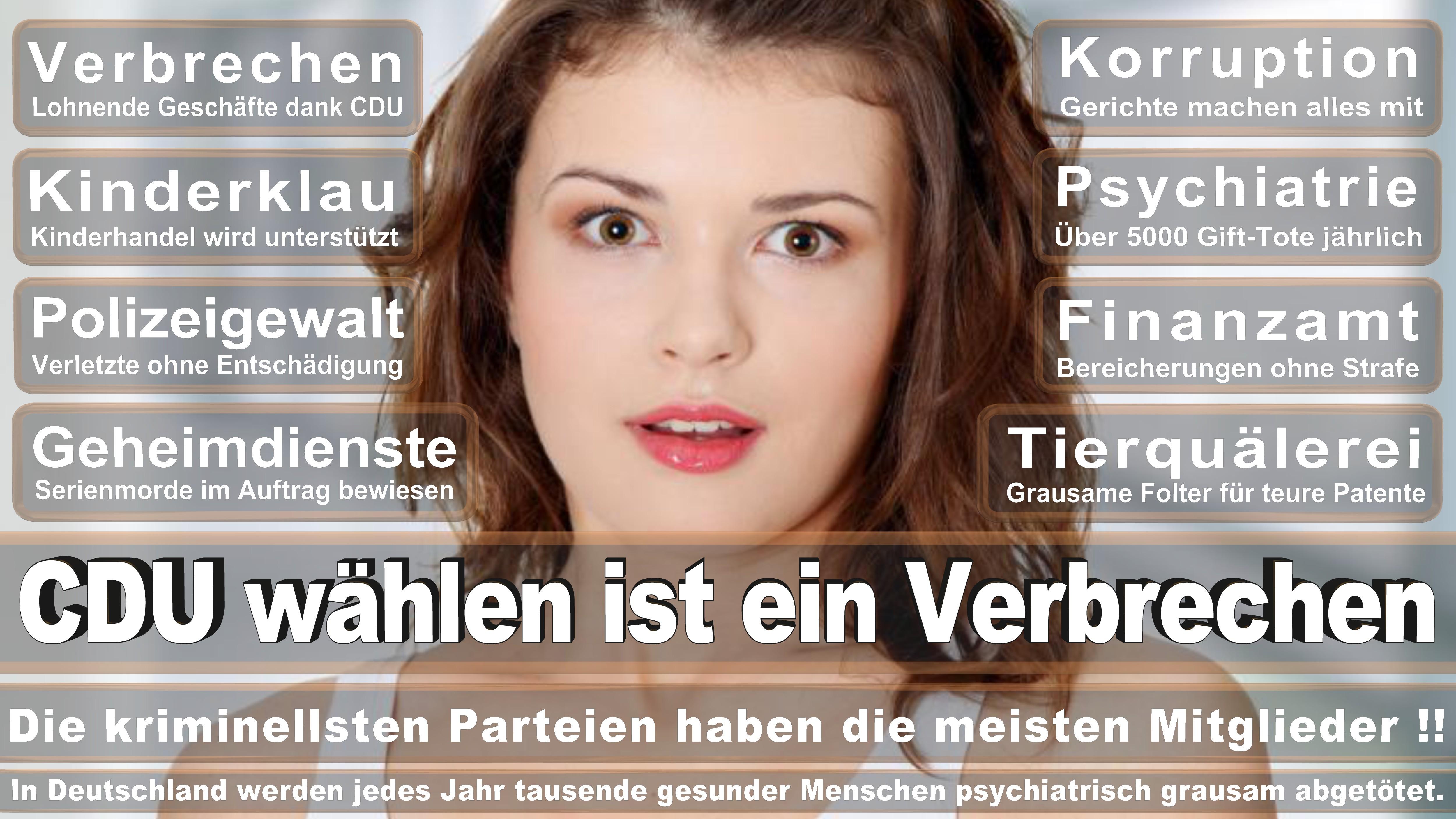 Cem Özdemir GRÜNE Baden Württemberg Politiker Deutschland