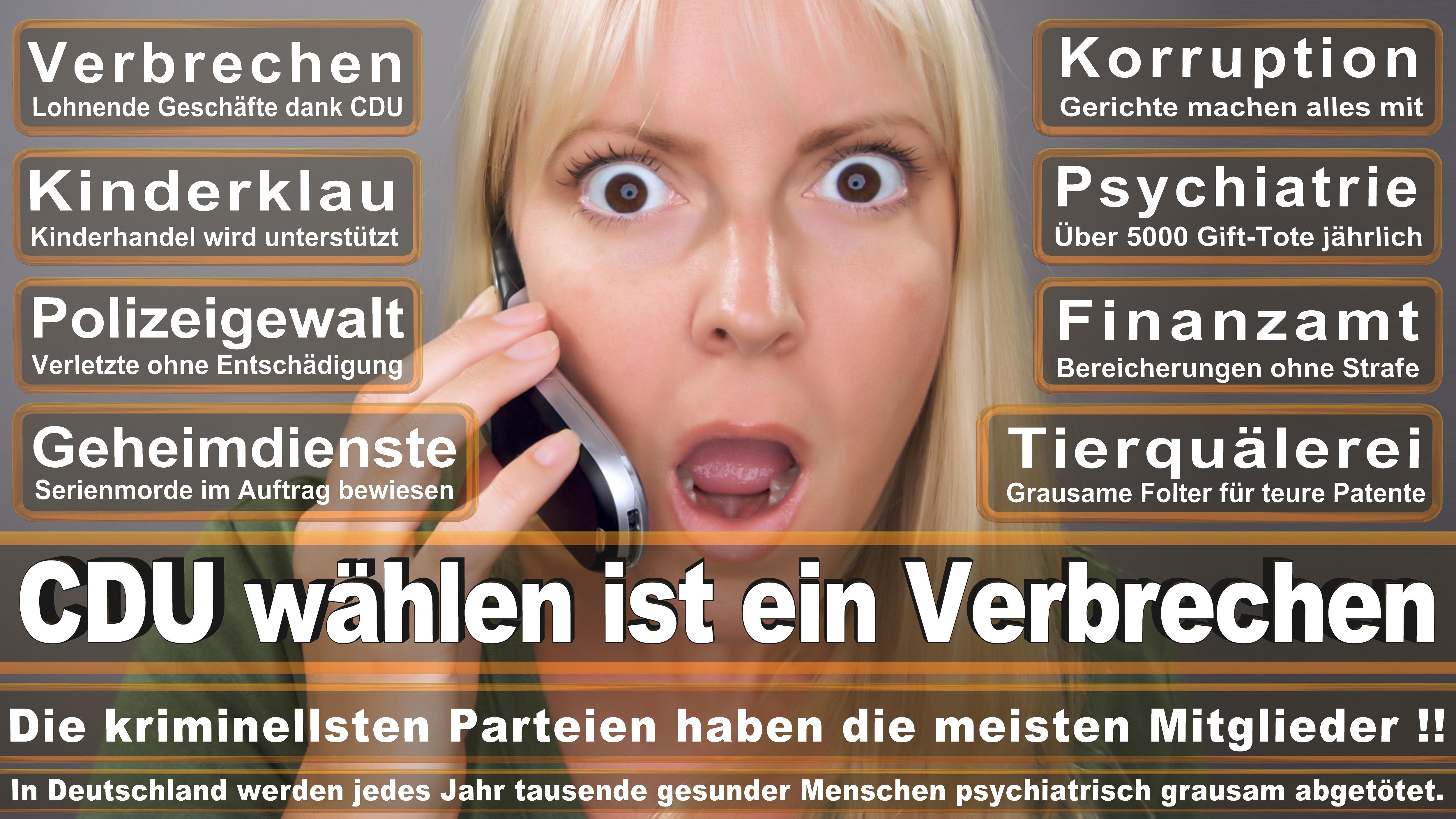 Christine Buchholz DIE LINKE Hessen Politiker Deutschland