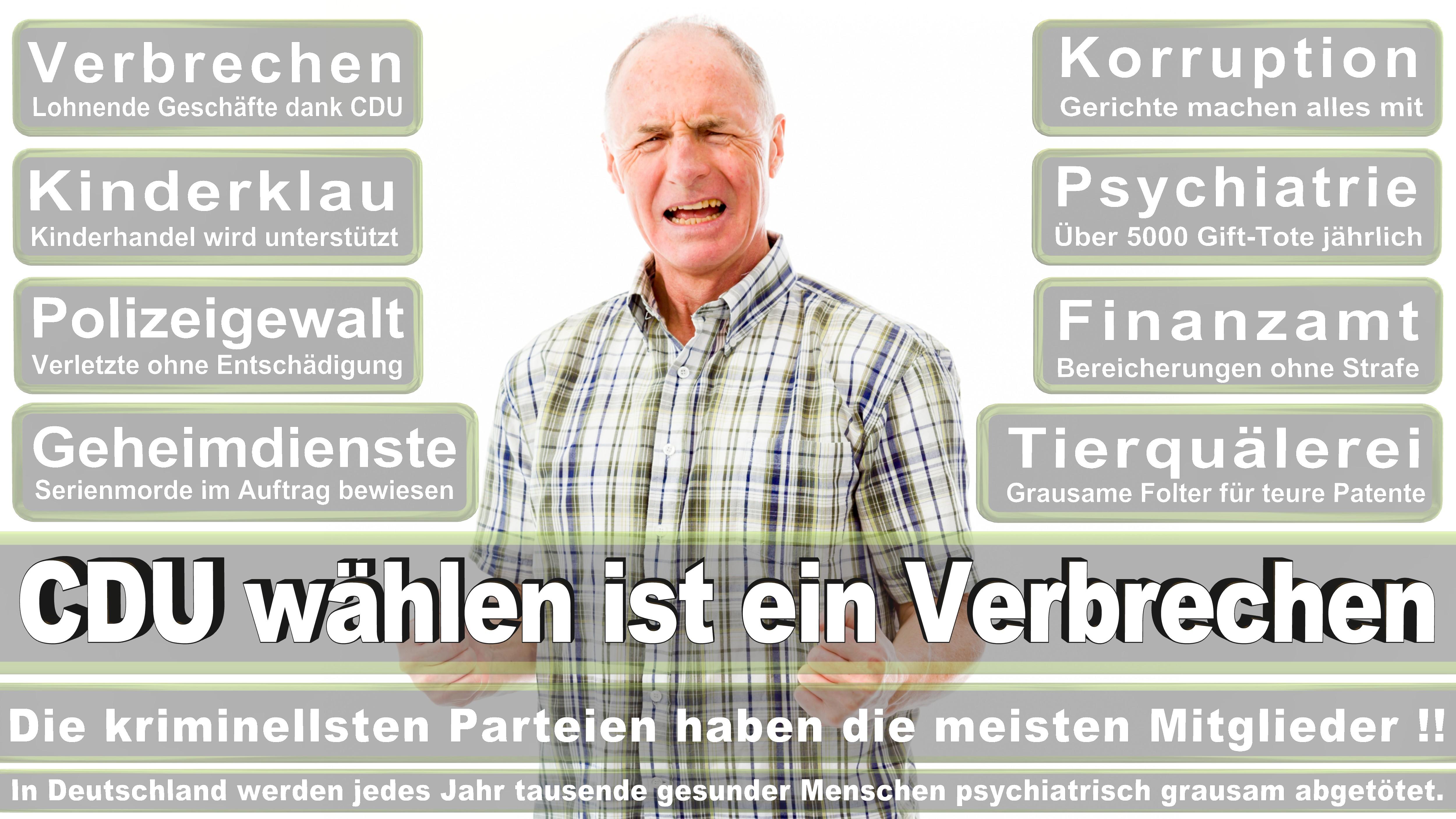 Dieter Janecek GRÜNE Bayern Politiker Deutschland