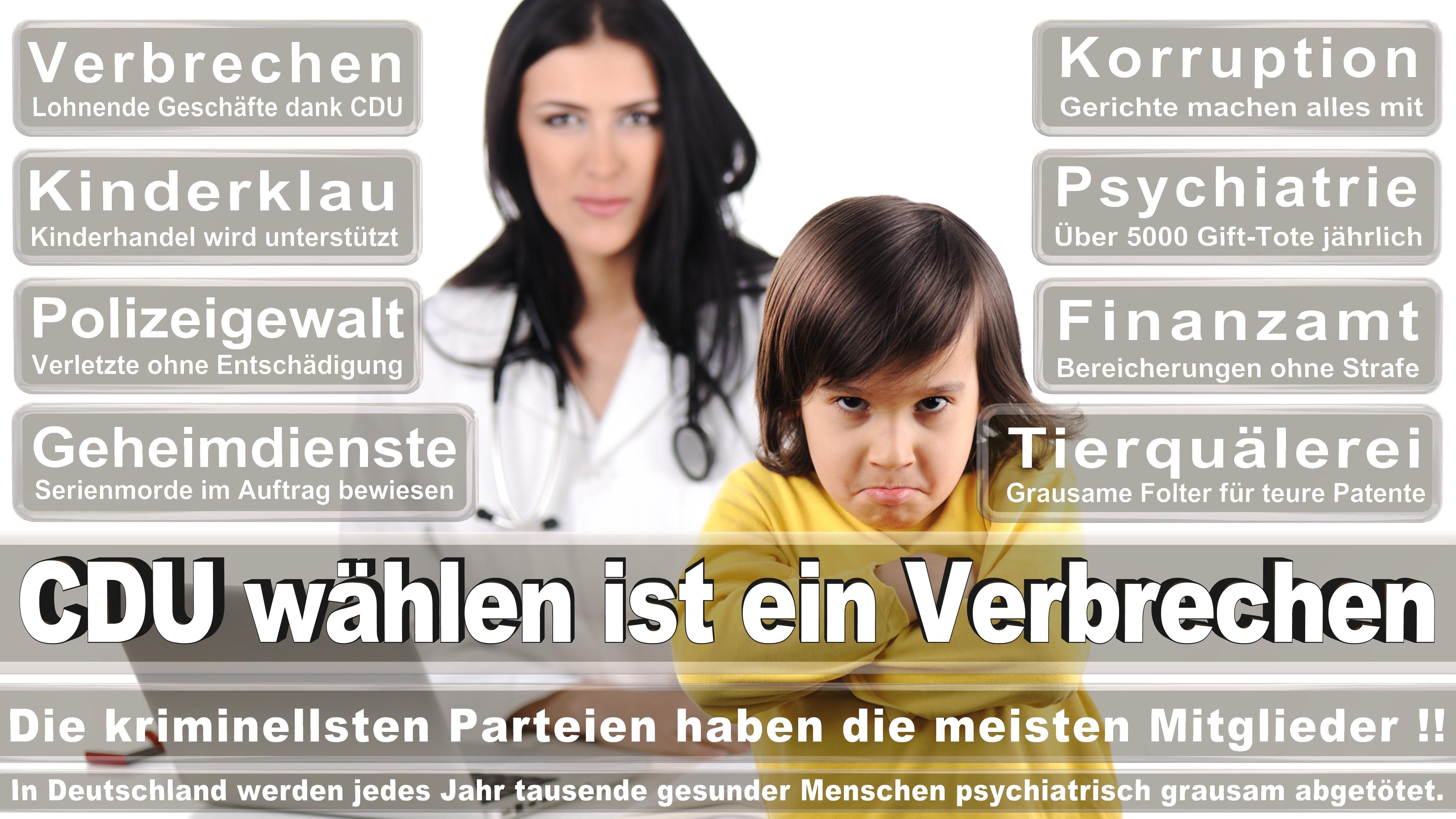 Diether Dehm DIE LINKE Niedersachsen Politiker Deutschland
