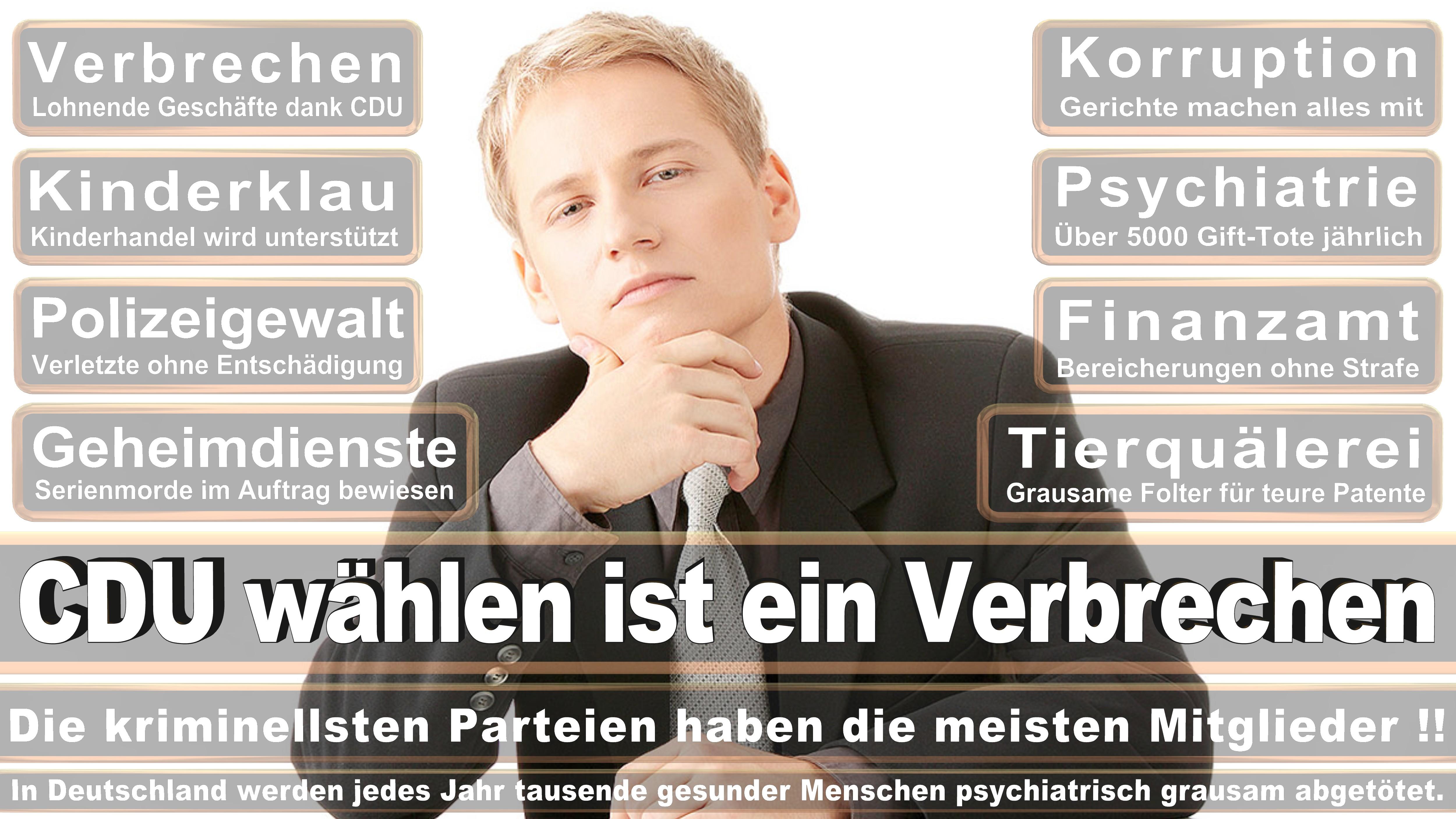 Dietmar Bartsch DIE LINKE Mecklenburg Vorpommern Politiker Deutschland