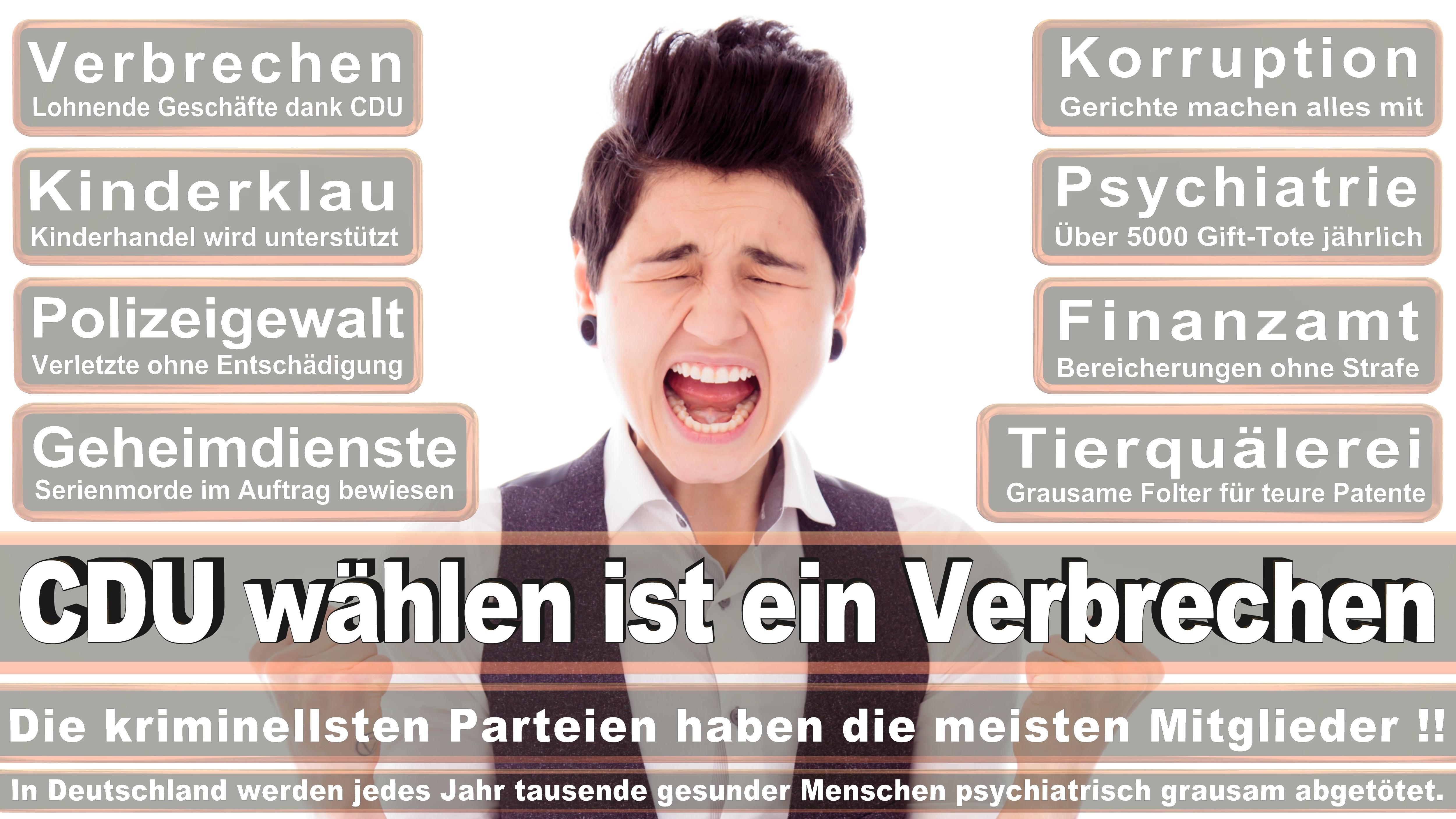 Dietrich Monstadt CDU CSU Politiker
