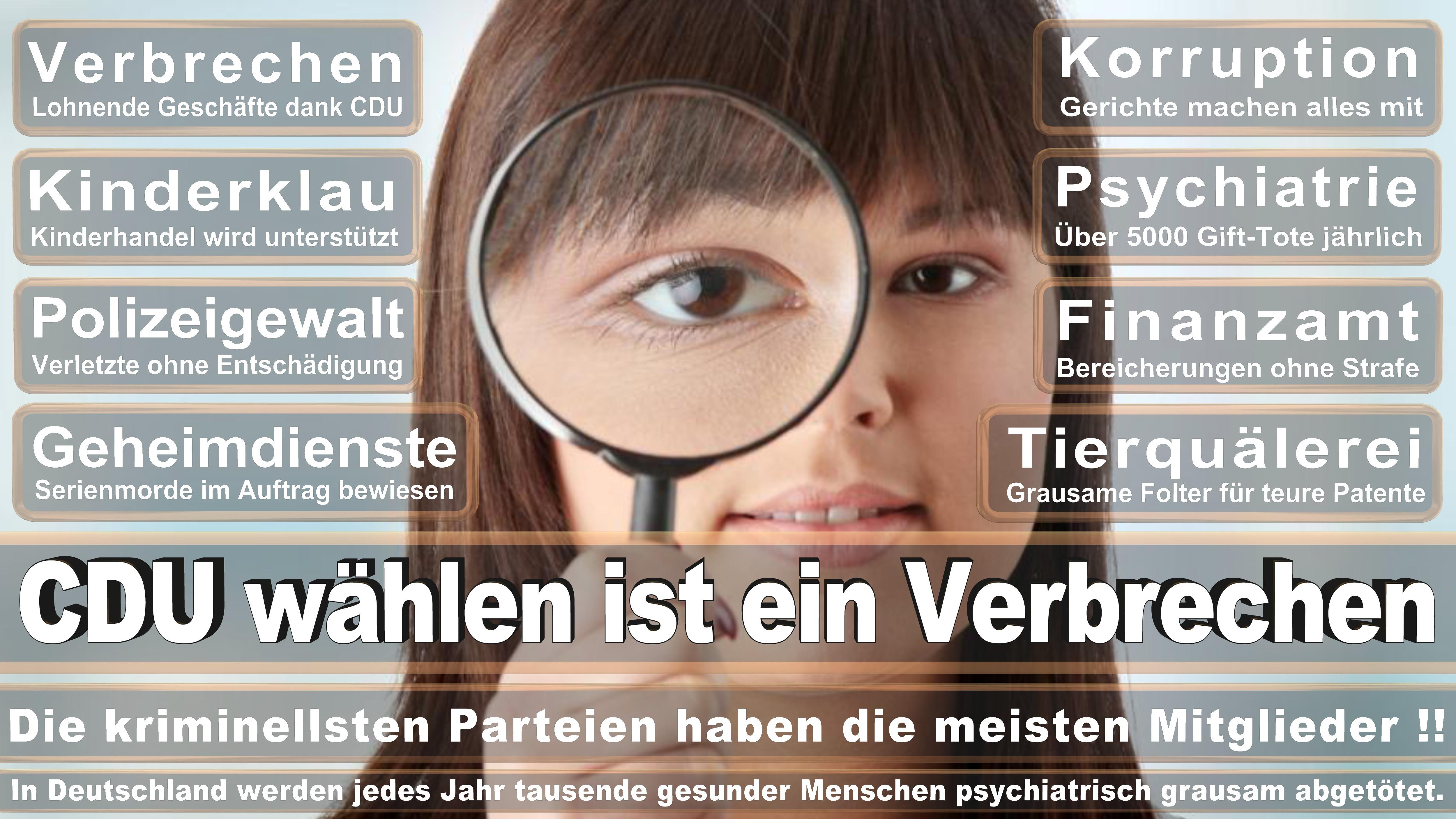 Dr Günter Krings CDU CSU Politiker
