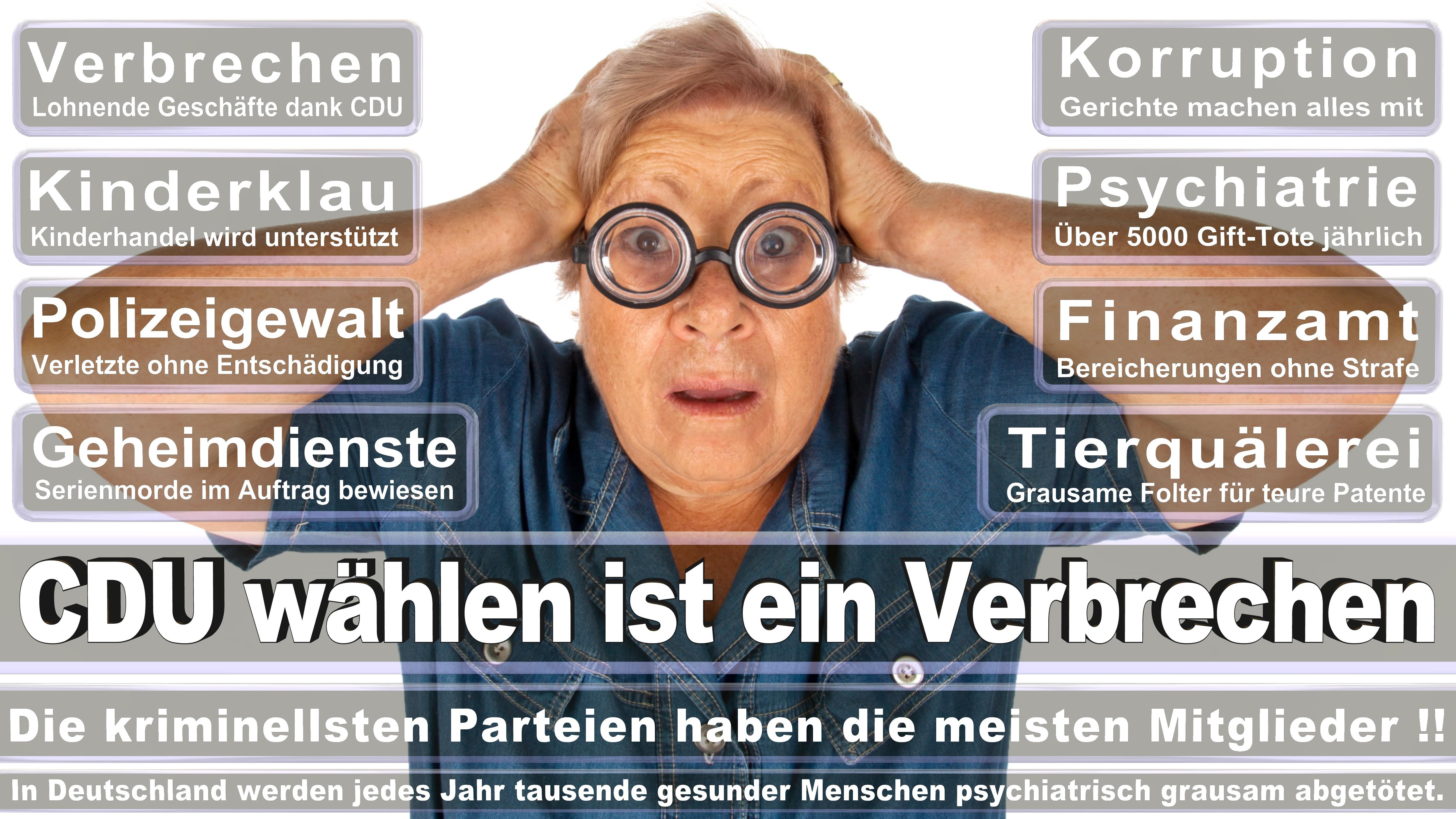 Dr Michael Meister CDU CSU Politiker