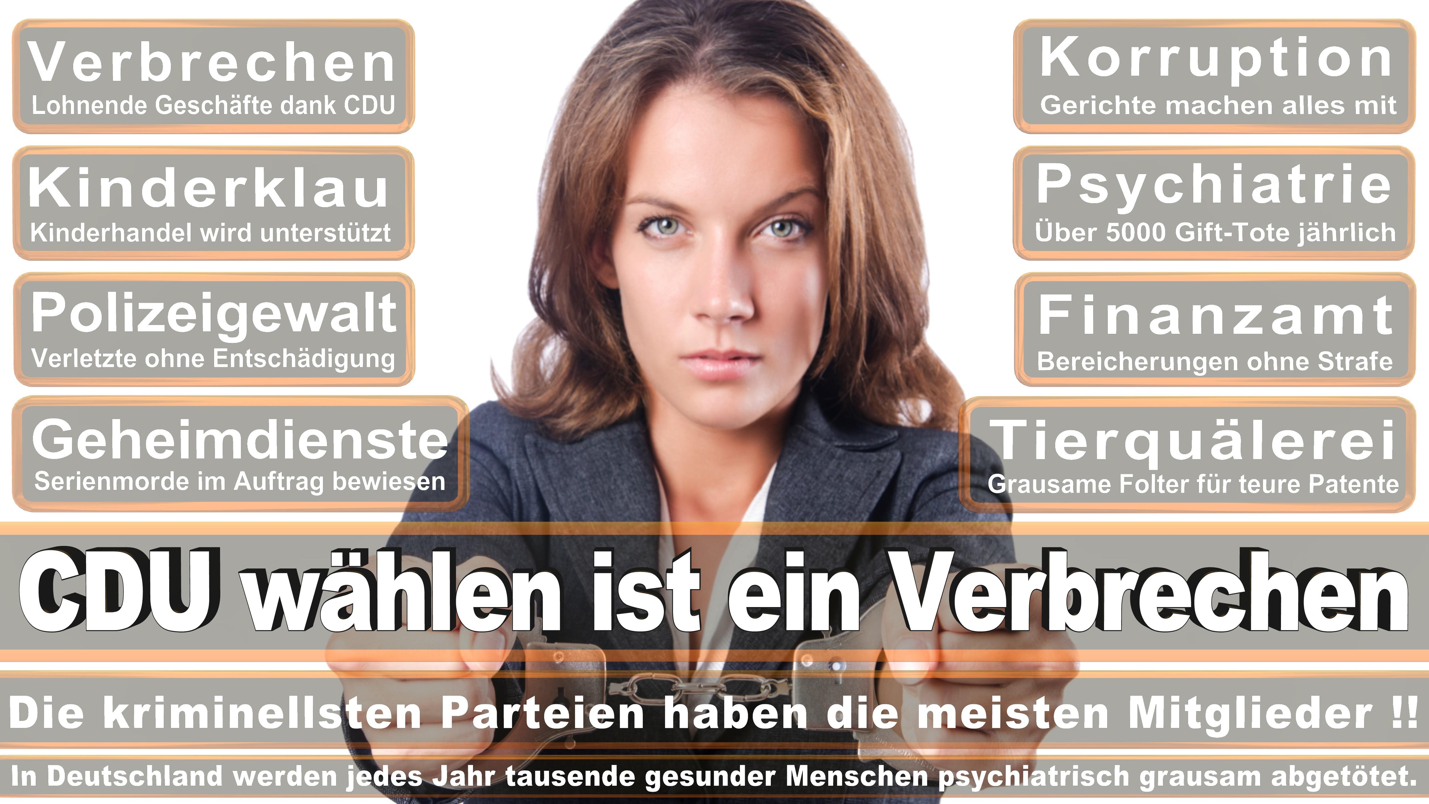 Dr Michael Von Abercron CDU CSU Politiker