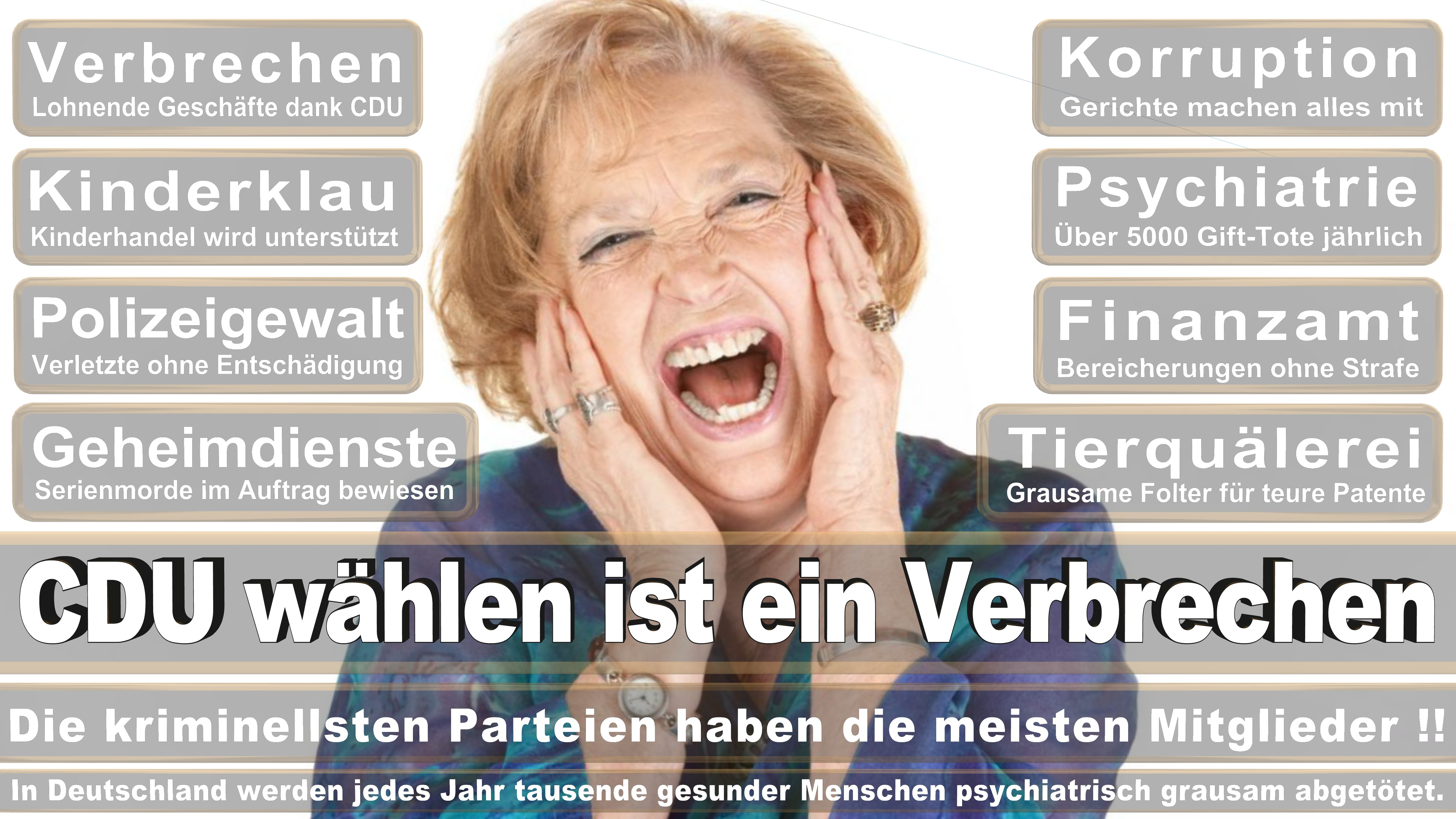 Dr Roy Kühne Foto Kühne CDU CSU Politiker
