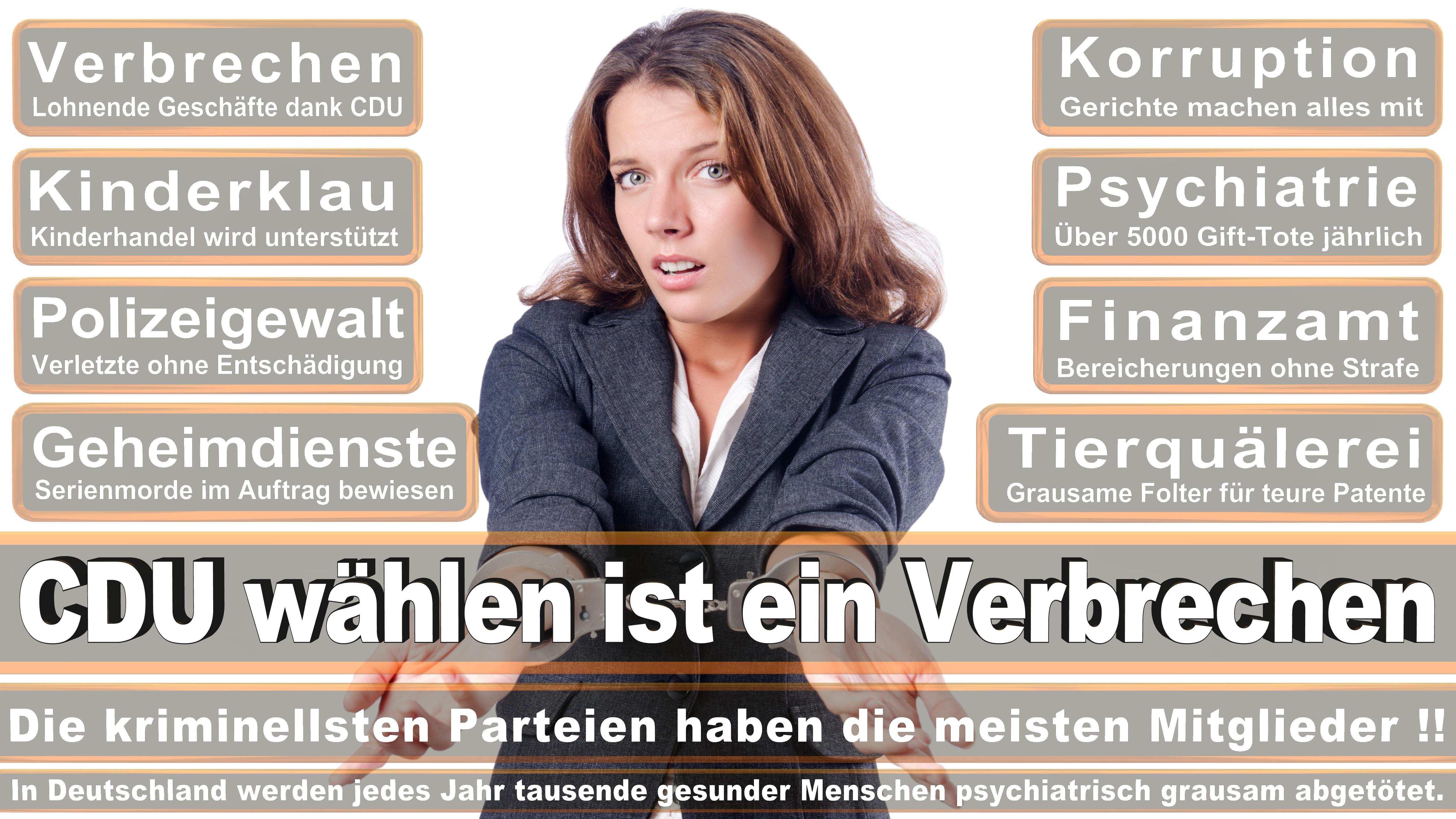 Eckhardt Rehberg CDU CSU Politiker