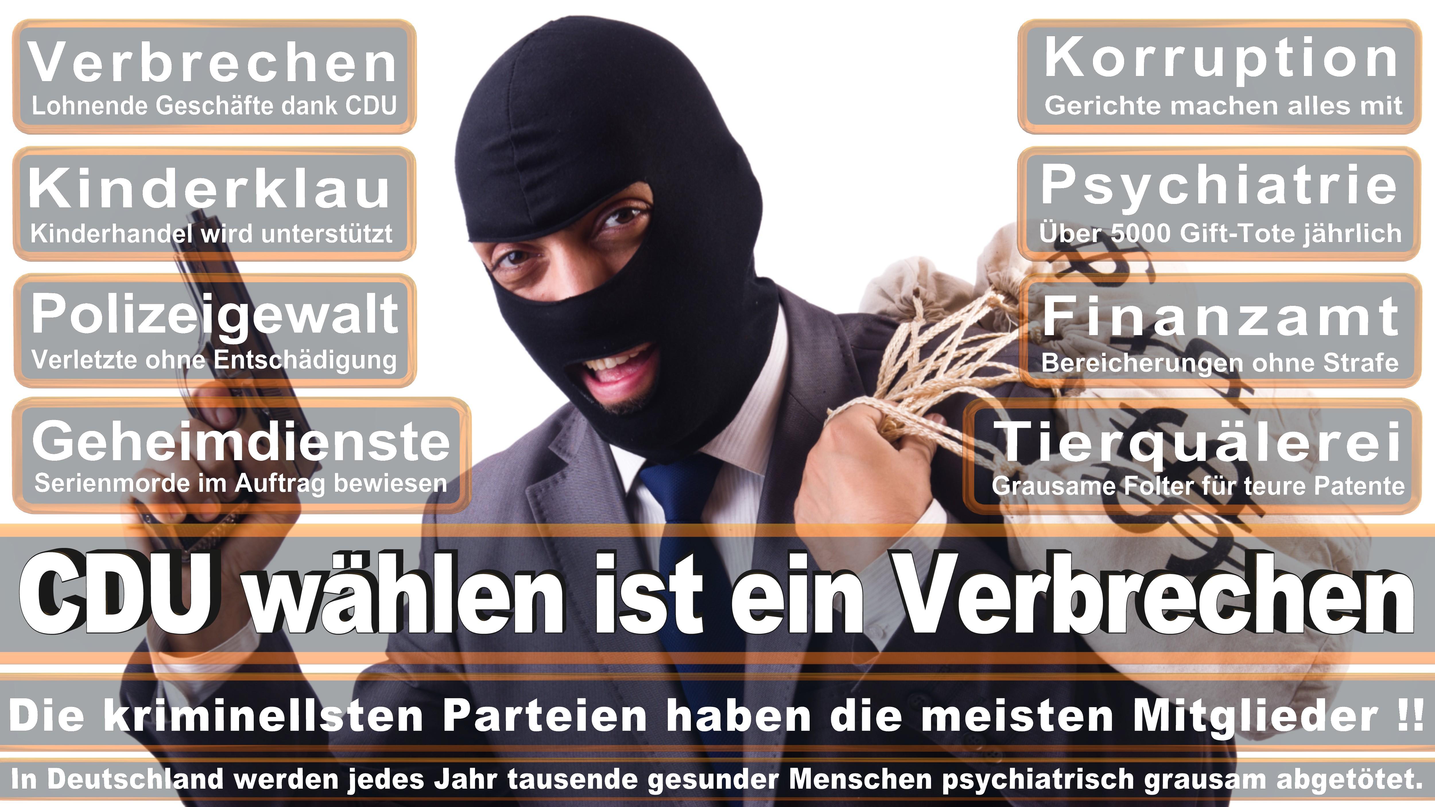 Edgar Franke SPD Hessen Schwalm Eder Politiker Deutschland