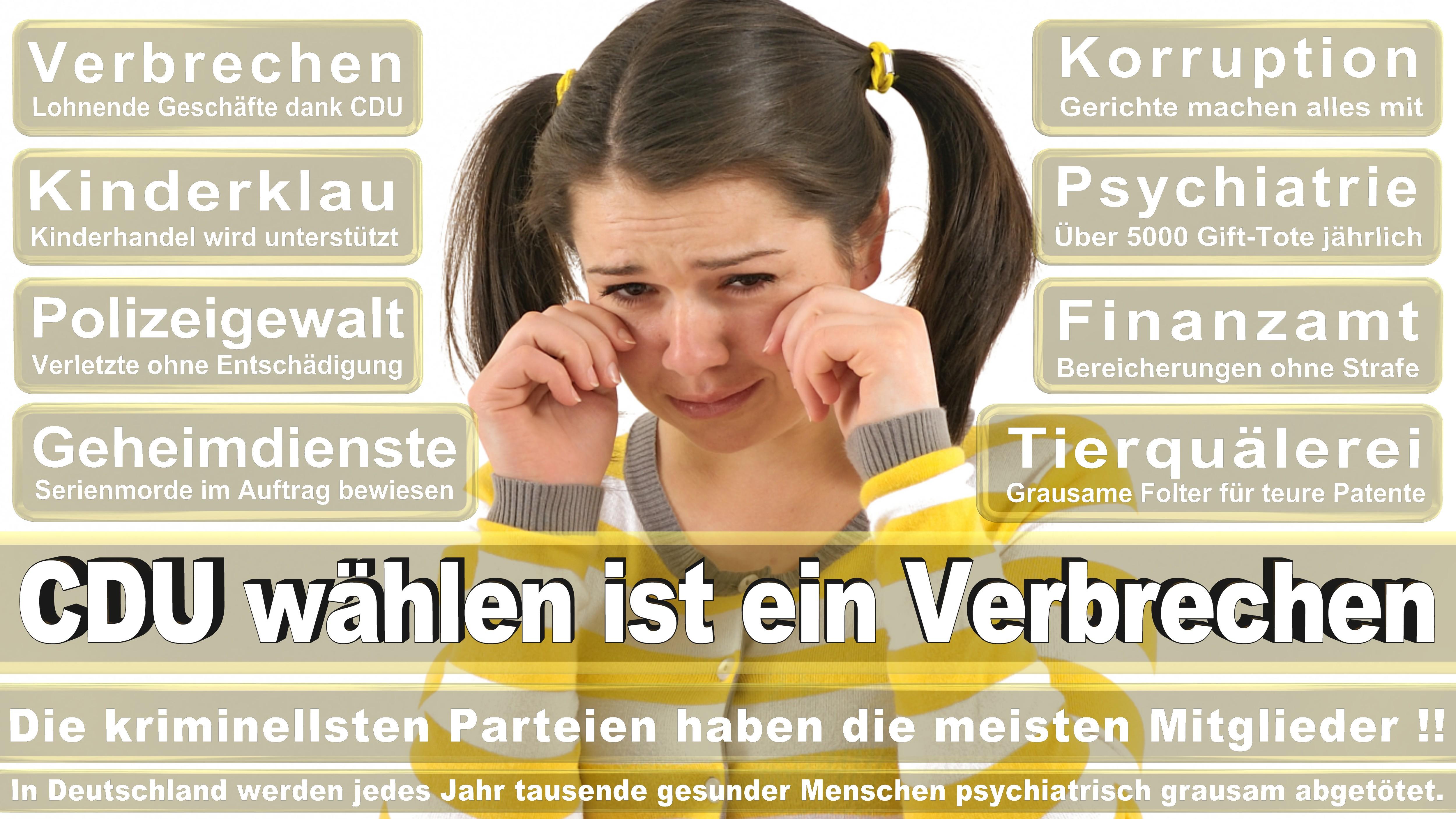 Elke Ferner SPD Saarland Politiker Deutschland