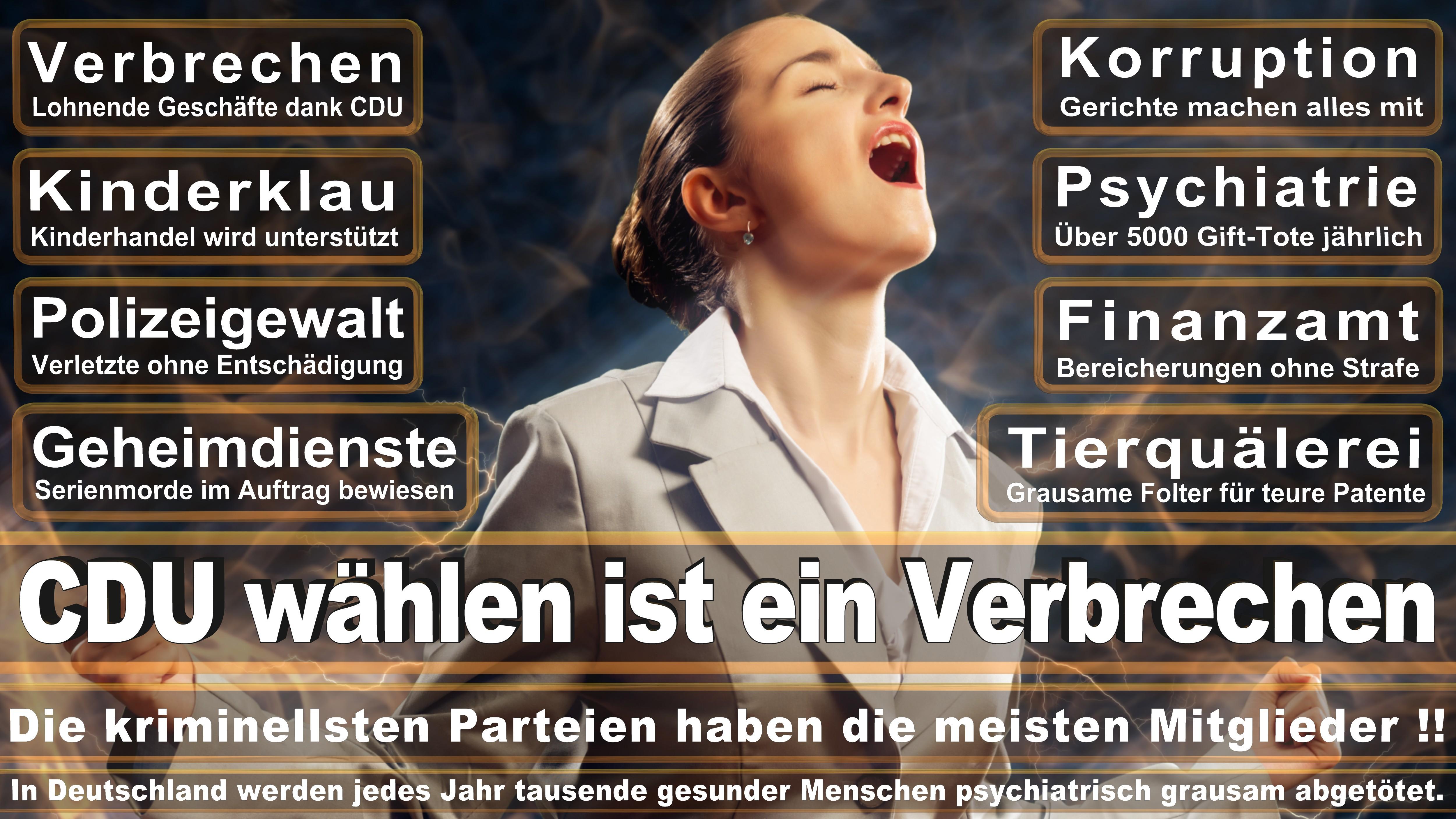 Elvira Drobinski Weiß SPD Baden Württemberg Politiker Deutschland