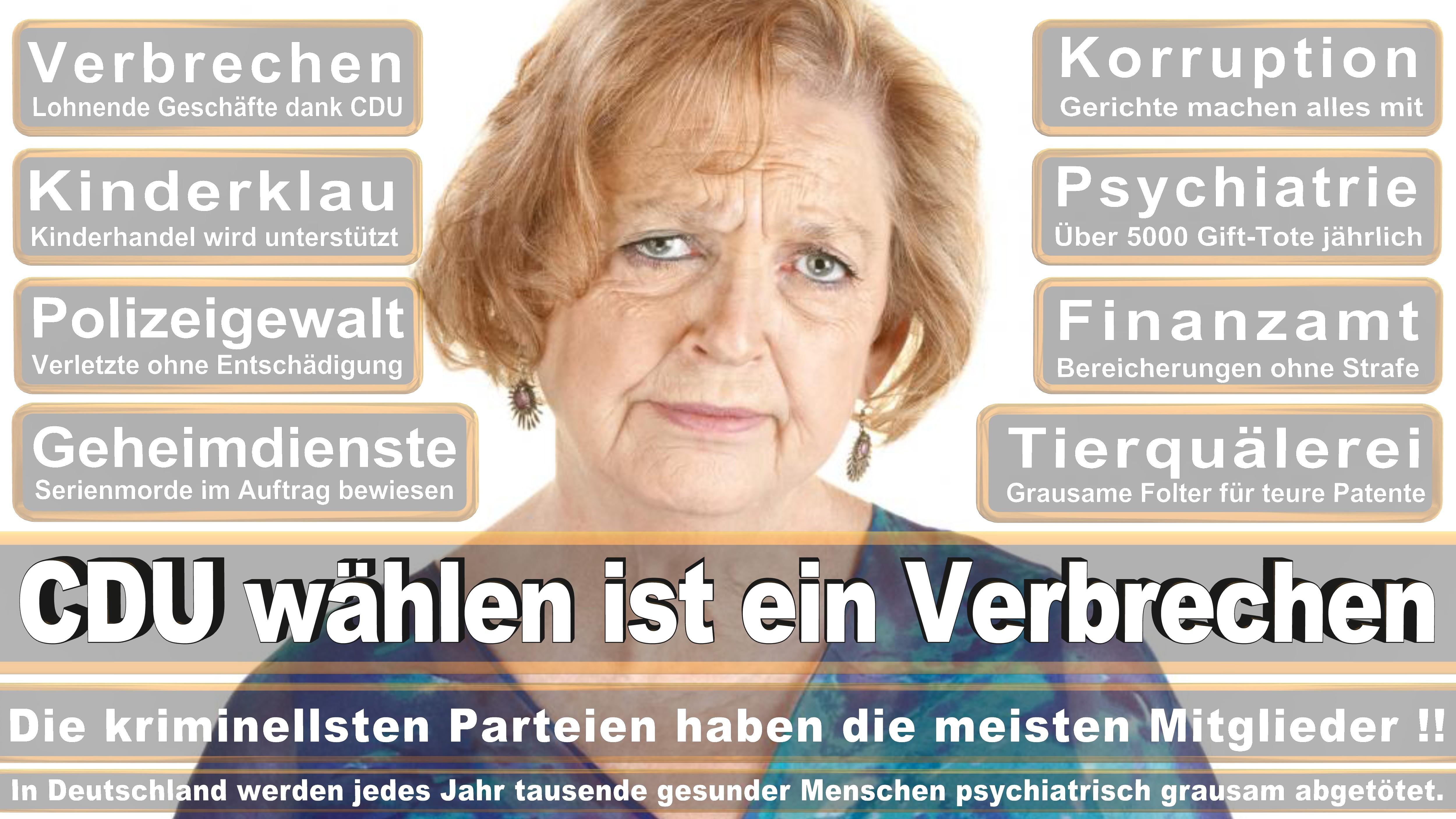 Enak Ferlemann CDU CSU Politiker