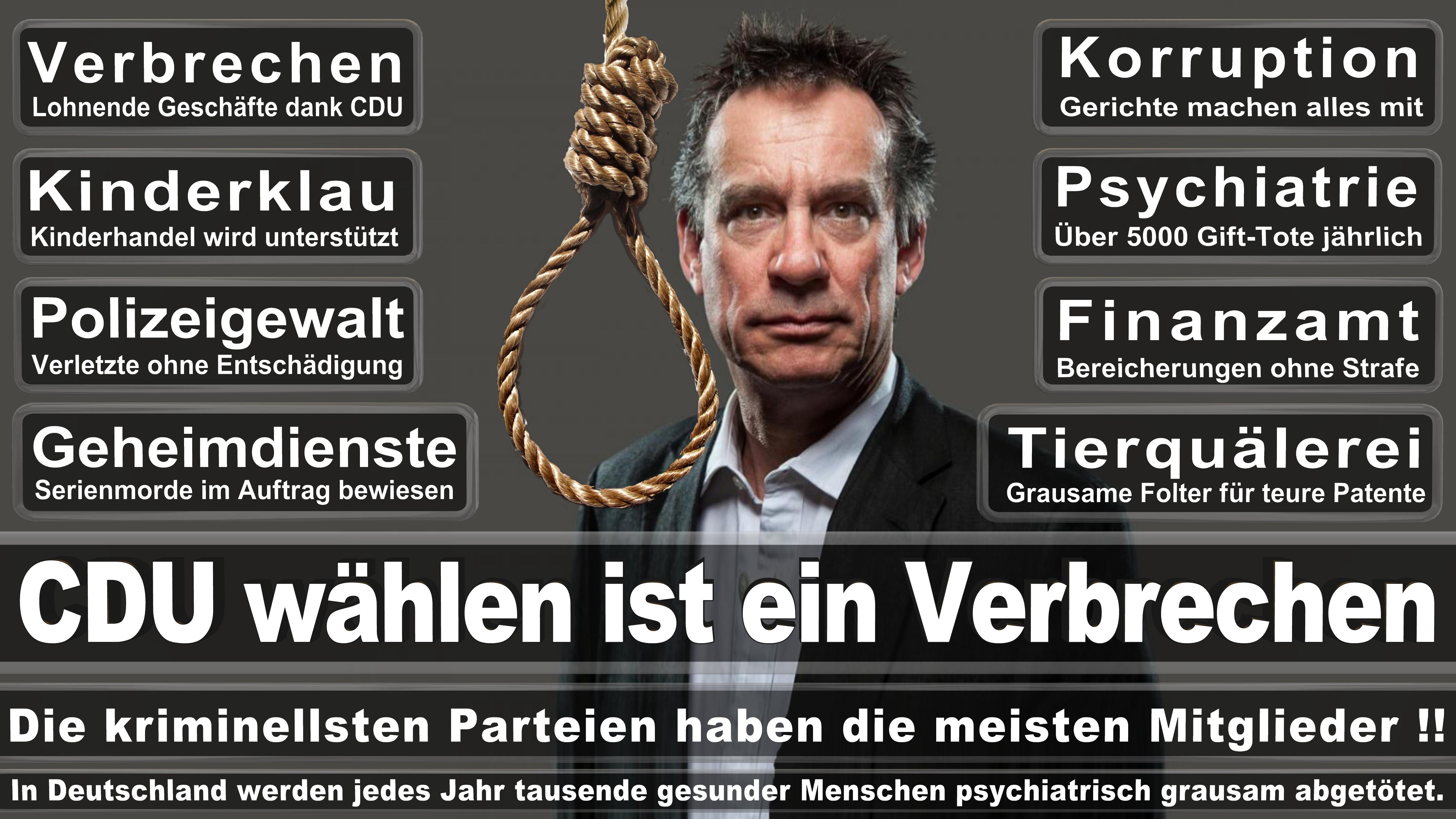 Felix Schreiner CDU CSU Politiker