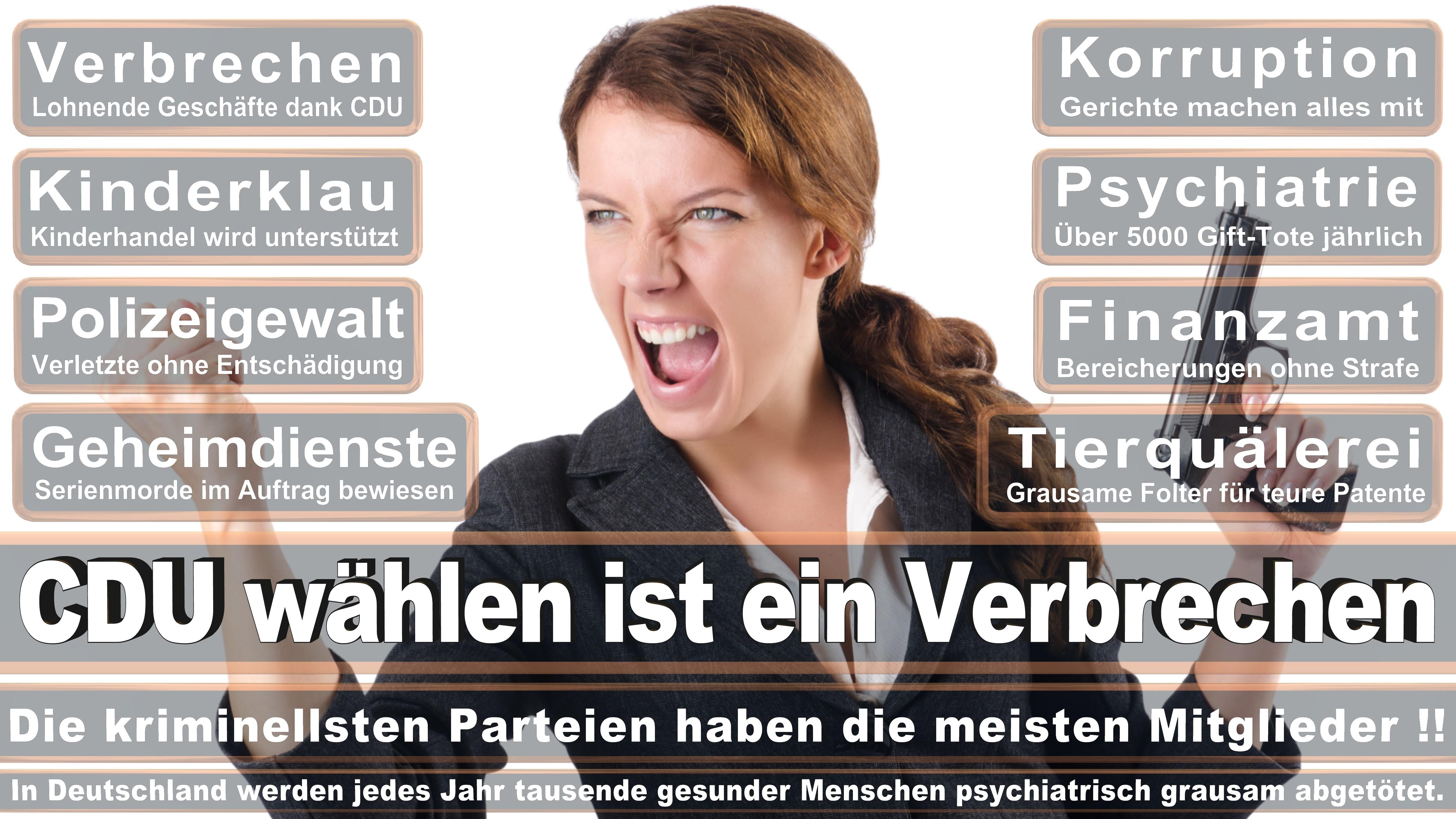 Gabriela Heinrich SPD Bayern Politiker Deutschland