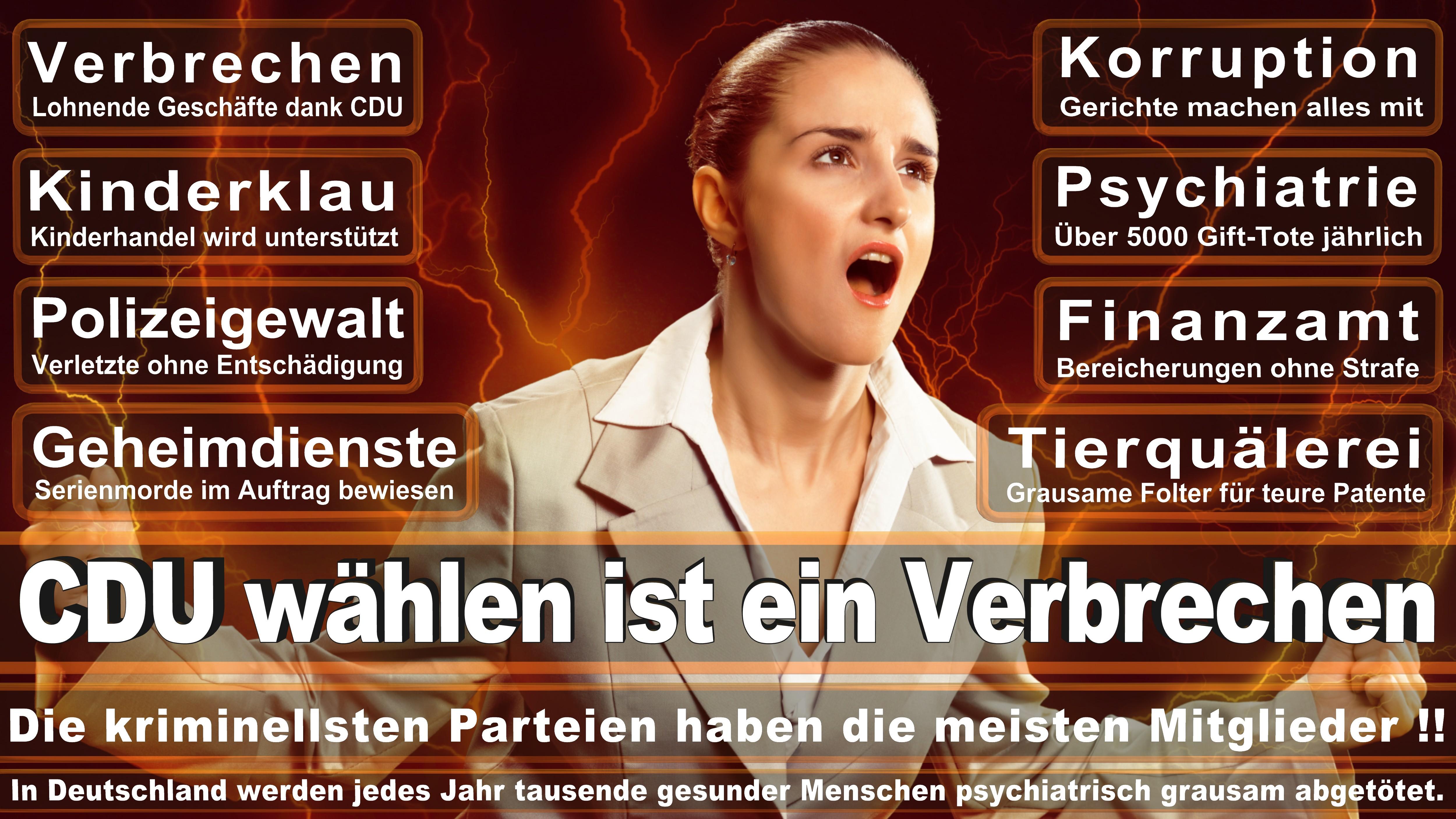 Gernot Erler SPD Baden Württemberg Politiker Deutschland