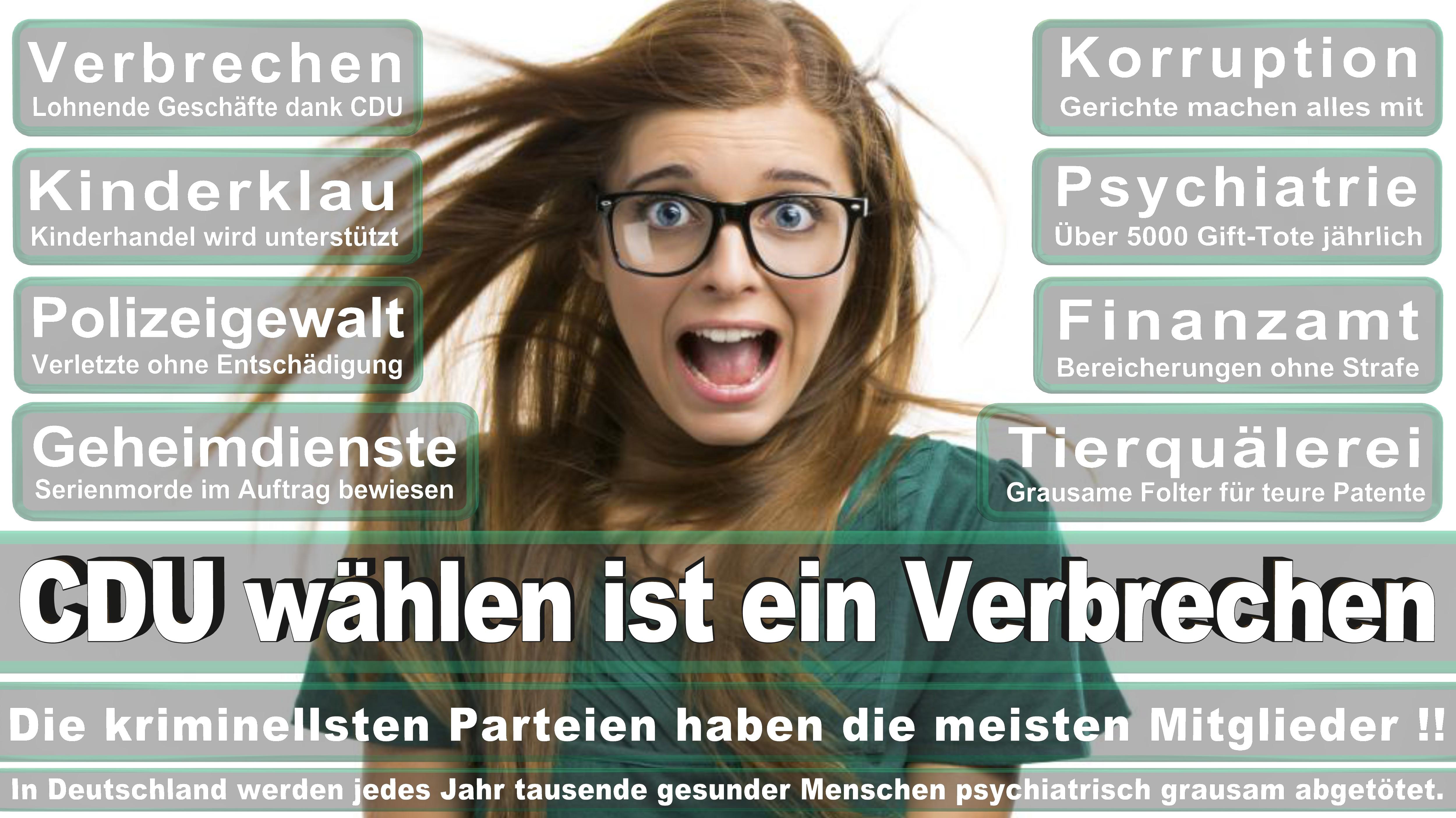 Gitta Connemann CDU Niedersachsen Unterems Politiker Deutschland