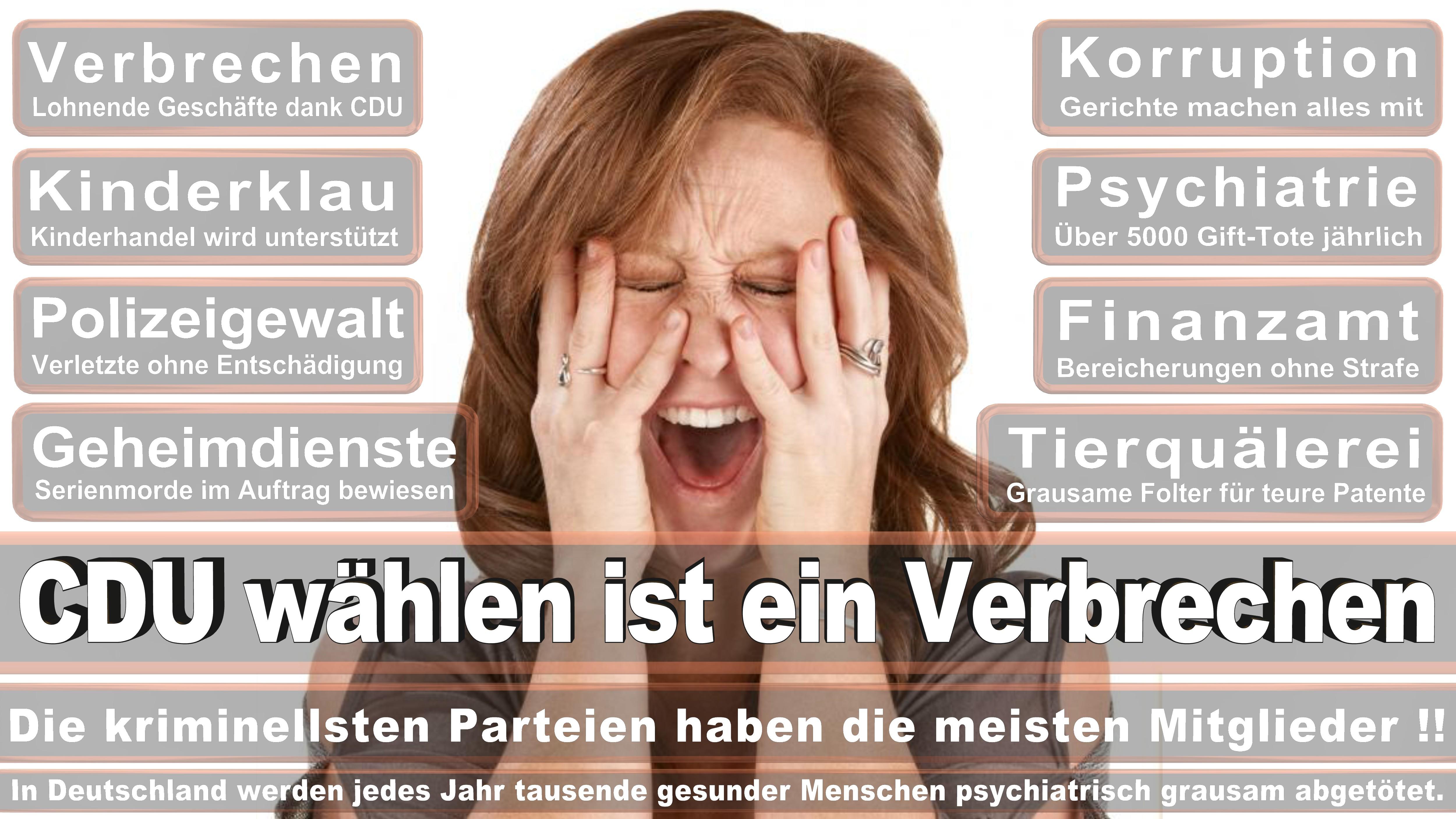 Gustav Herzog SPD Rheinland Pfalz Kaiserslautern Politiker Deutschland