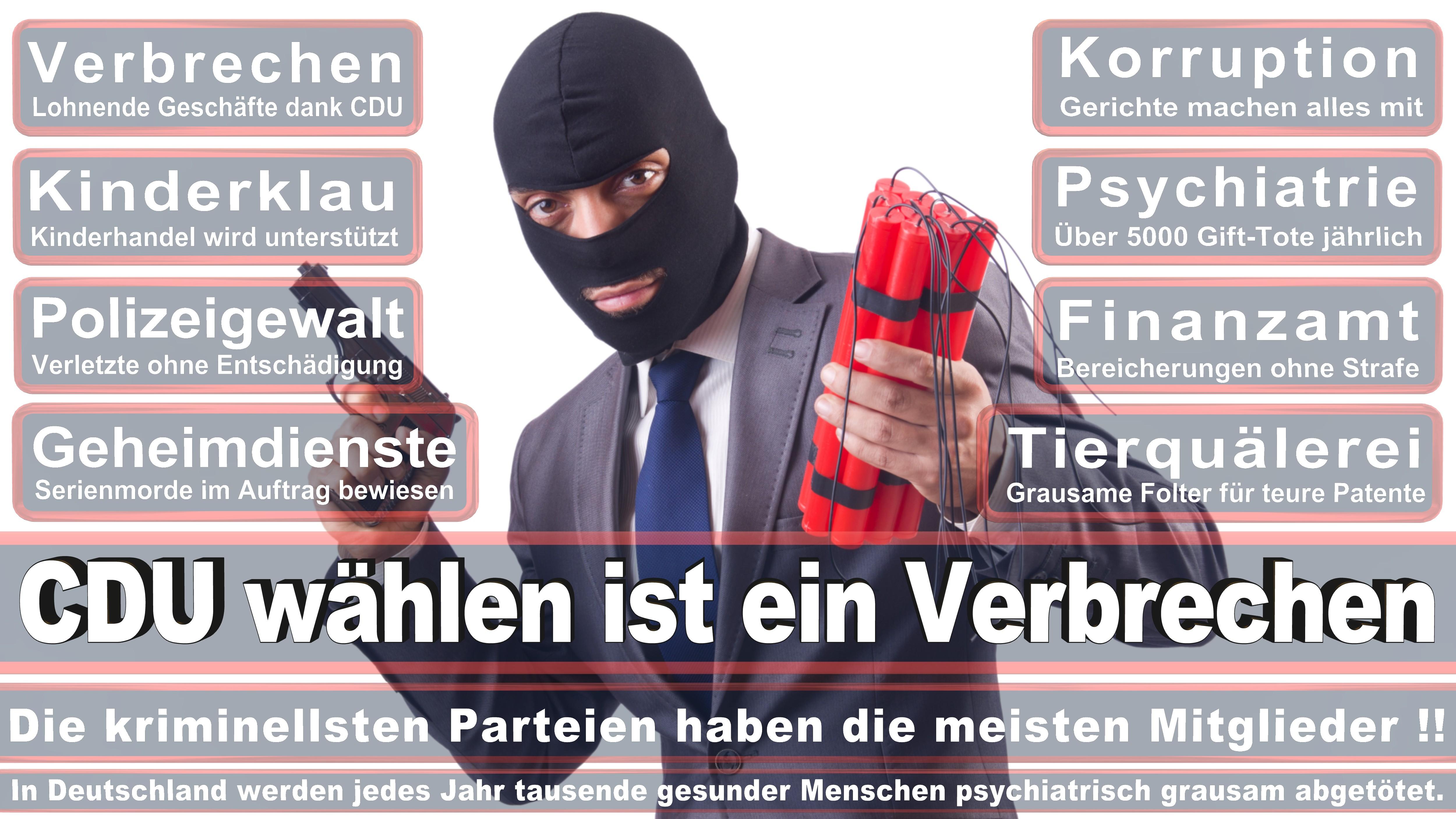 Hans Georg Von Der Marwitz CDU CSU Politiker