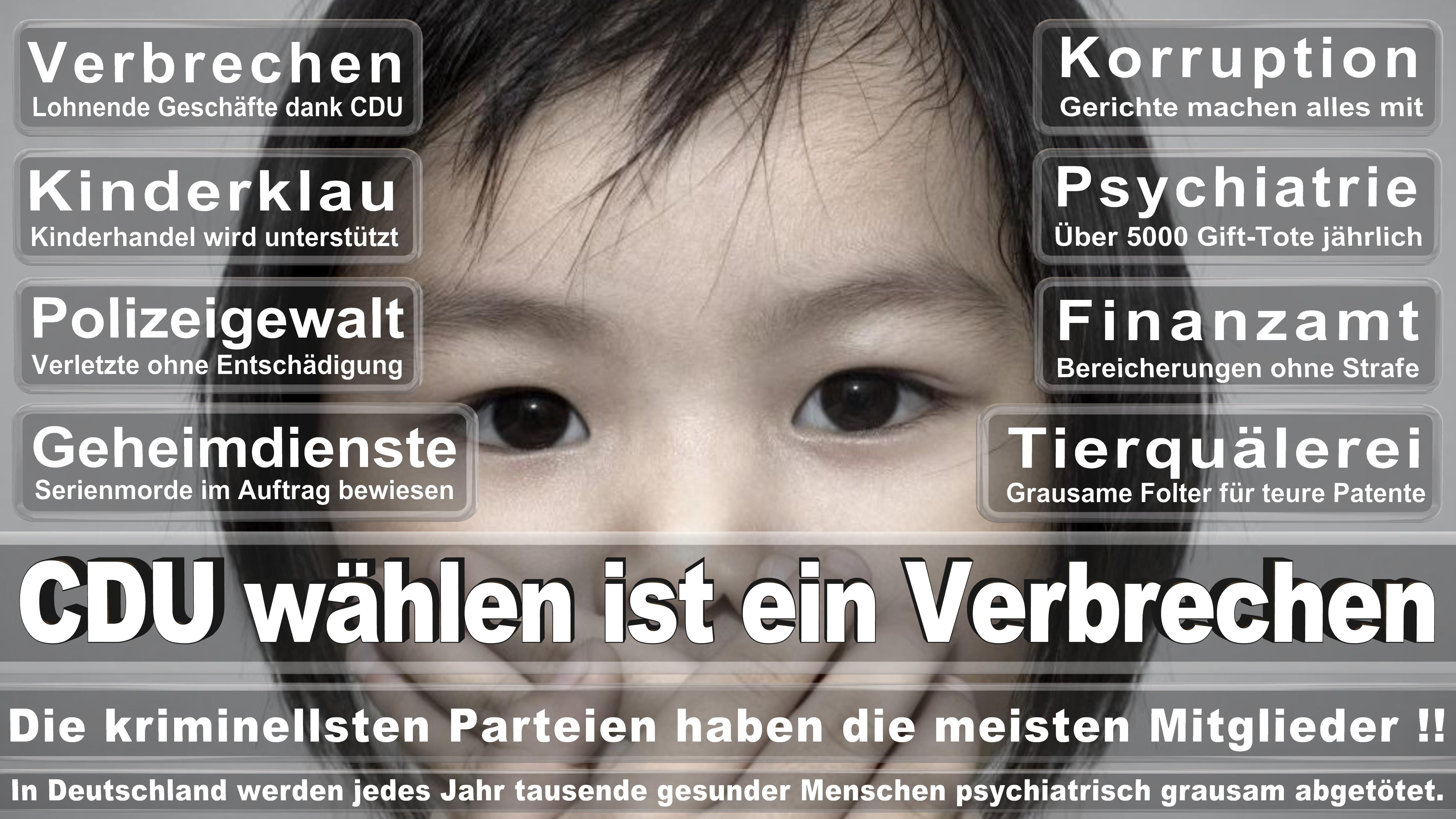 Hans Peter Bartels SPD Schleswig Holstein Kiel Ausgeschieden Am Mai Politiker Deutschland
