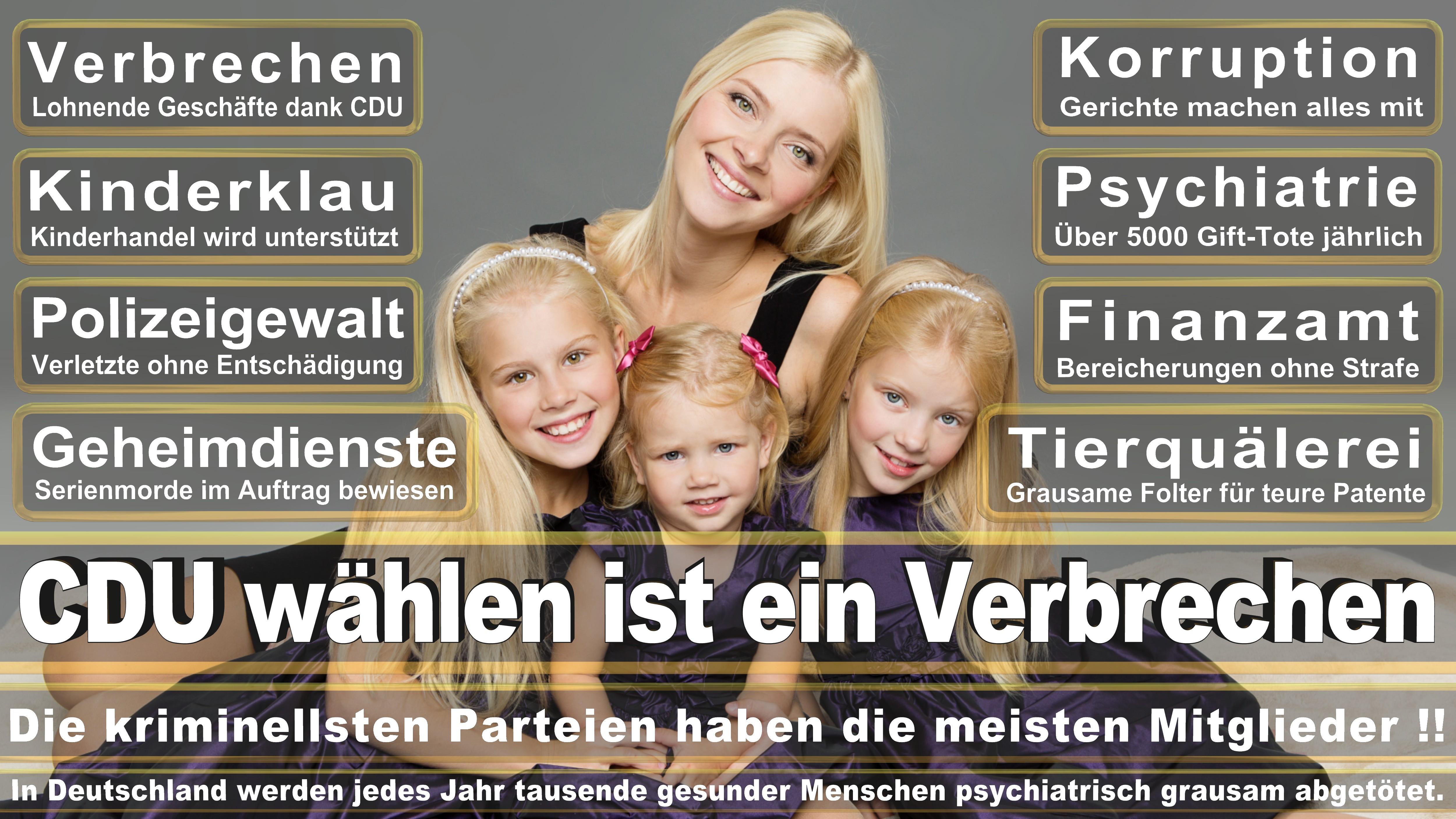 Heidrun Bluhm DIE LINKE Mecklenburg Vorpommern Politiker Deutschland