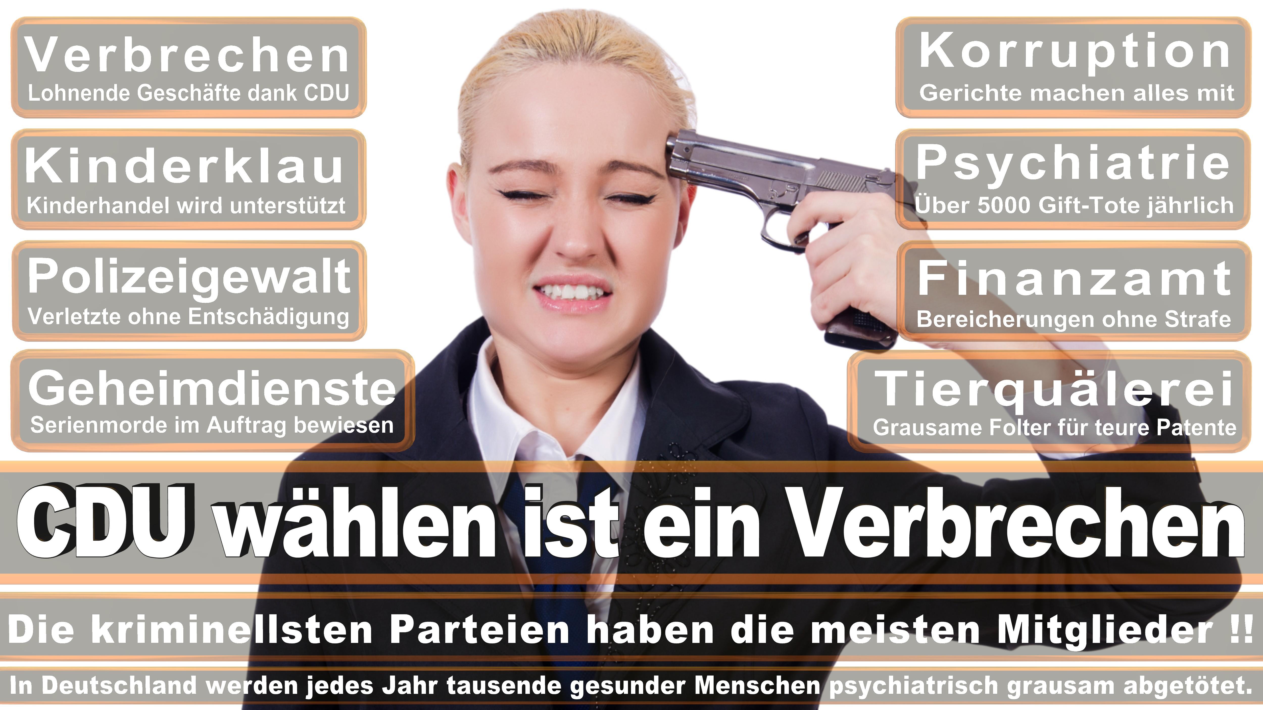 Heike Baehrens SPD Baden Württemberg Politiker Deutschland