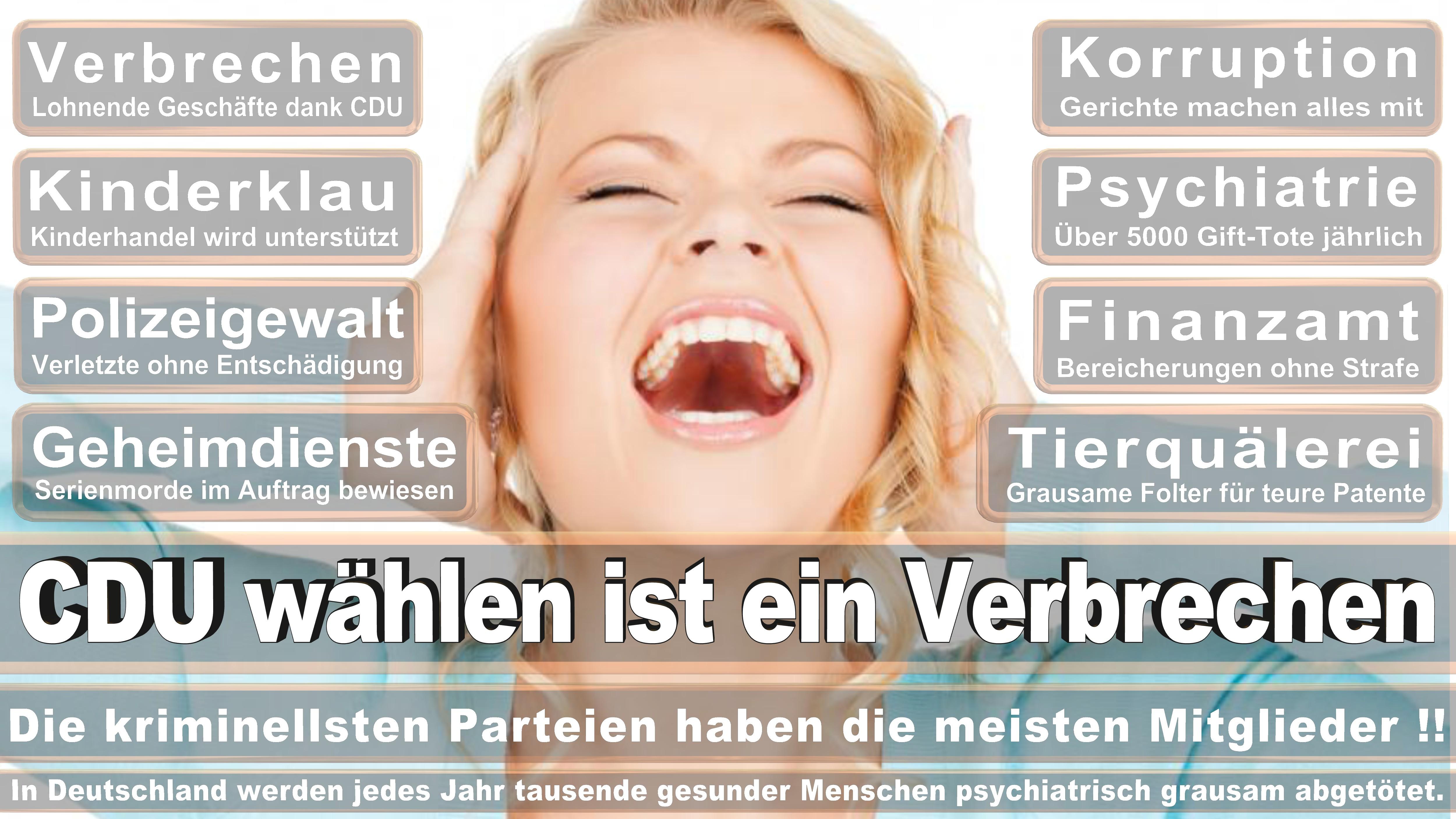 Heike Brehmer CDU CSU Politiker