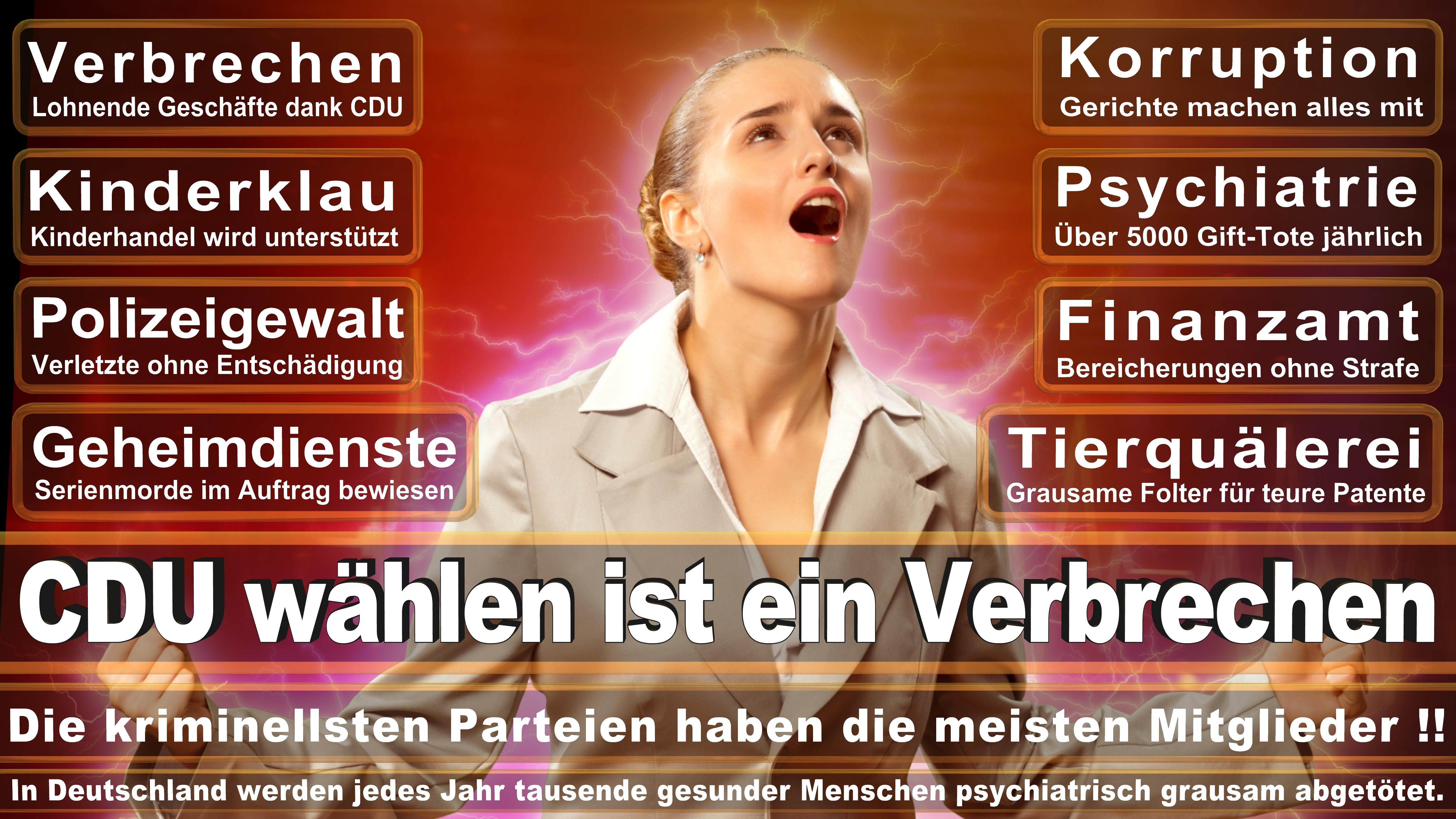 Henning Otte CDU Niedersachsen Celle Uelzen Politiker Deutschland