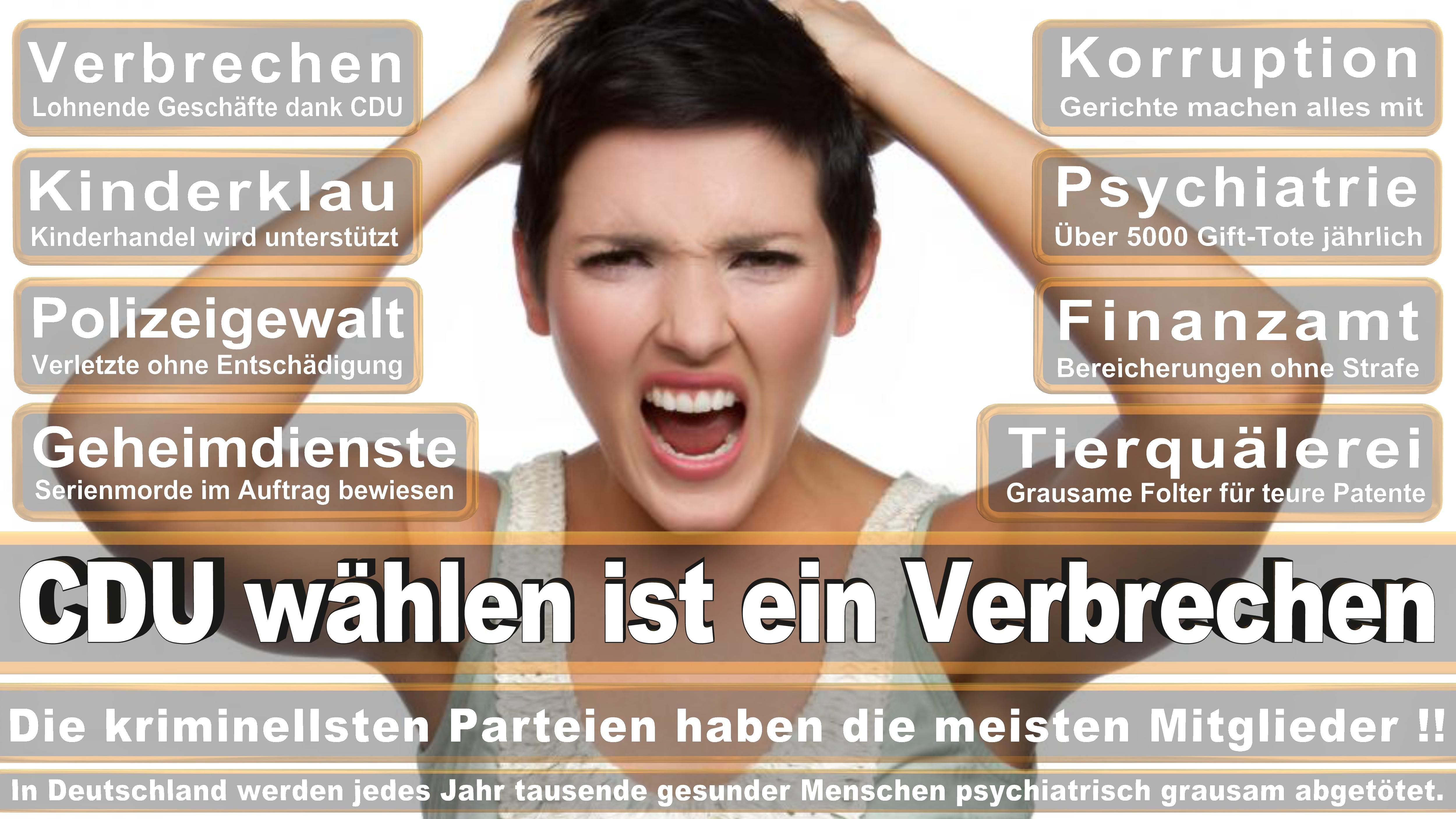 Heribert Hirte CDU Nordrhein Westfalen Köln II Politiker Deutschland