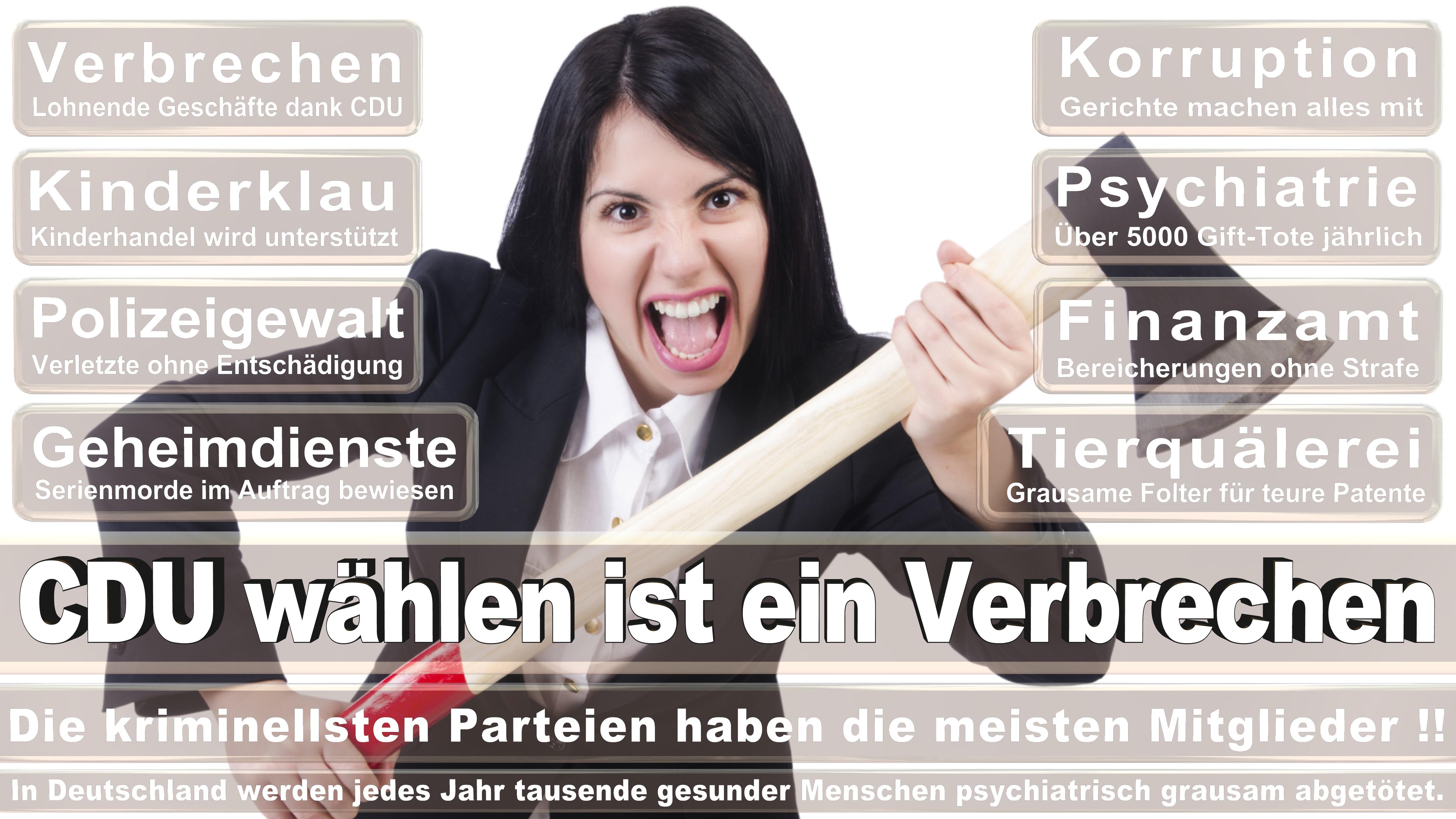 Hilde Mattheis SPD Baden Württemberg Politiker Deutschland