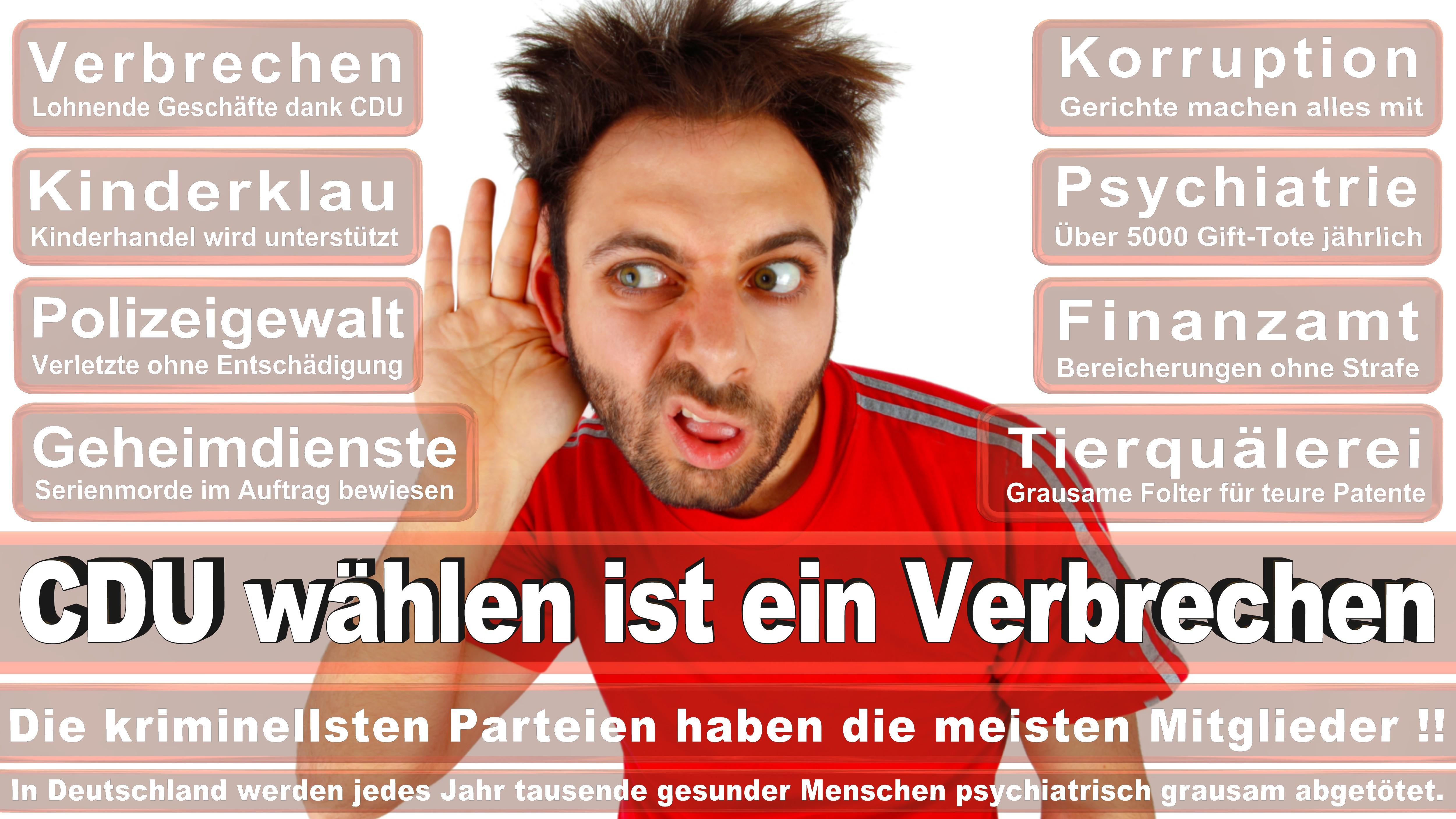 Ingo Gädechens CDU Schleswig Holstein Ostholstein Stormarn Nord Politiker Deutschland
