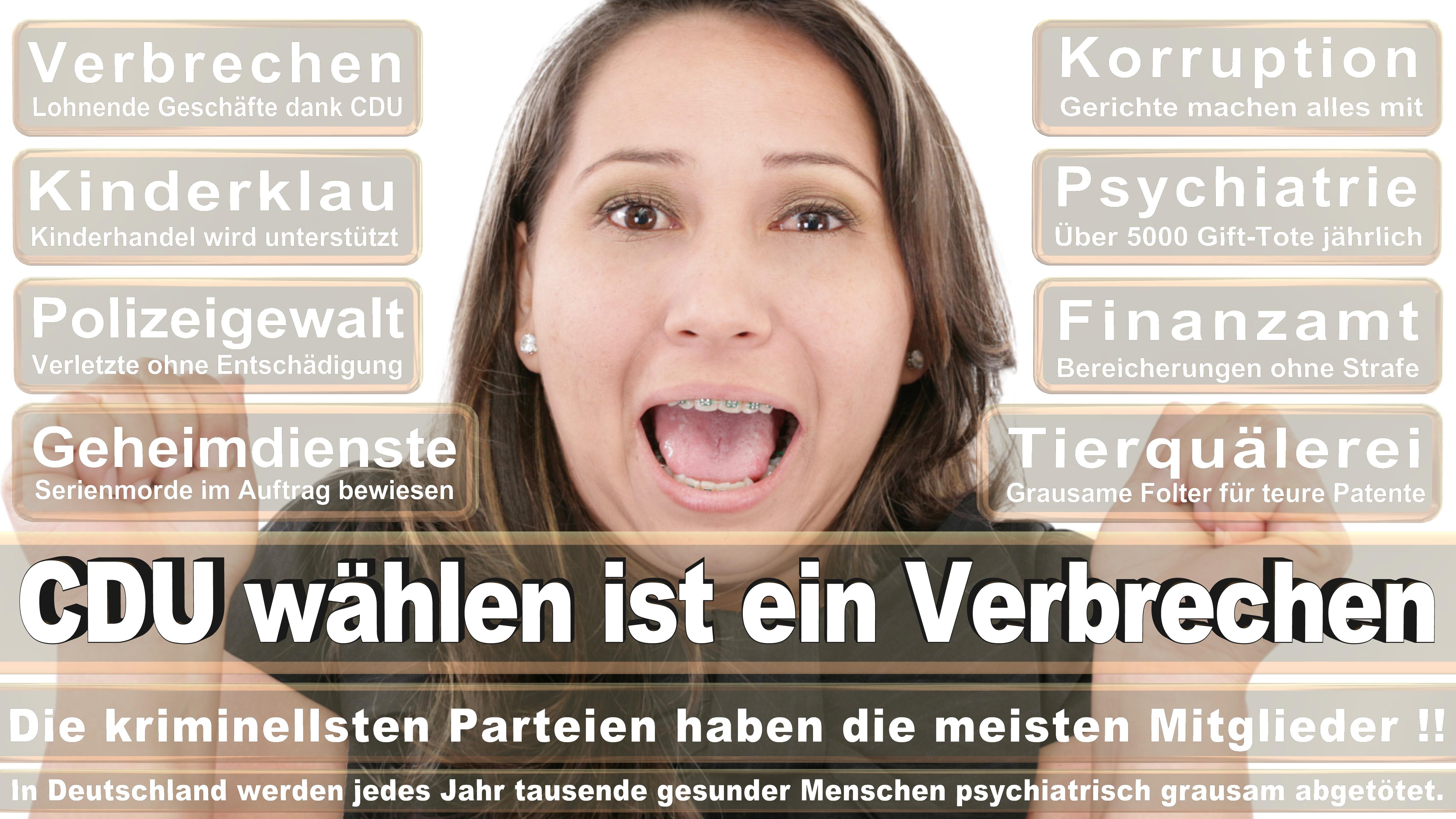 Jan Korte DIE LINKE Sachsen Anhalt Politiker Deutschland
