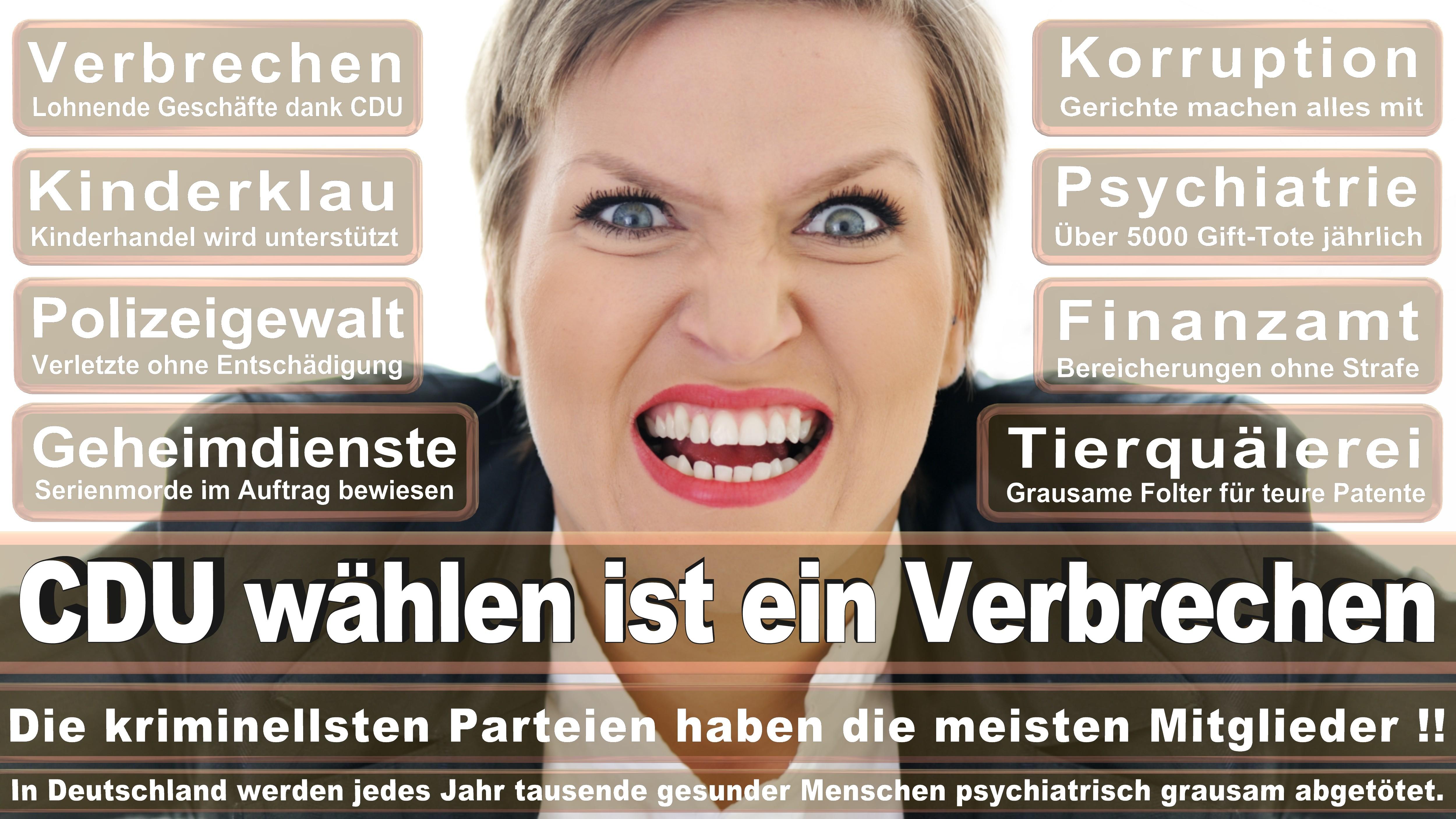 Johannes Selle CDU CSU Politiker