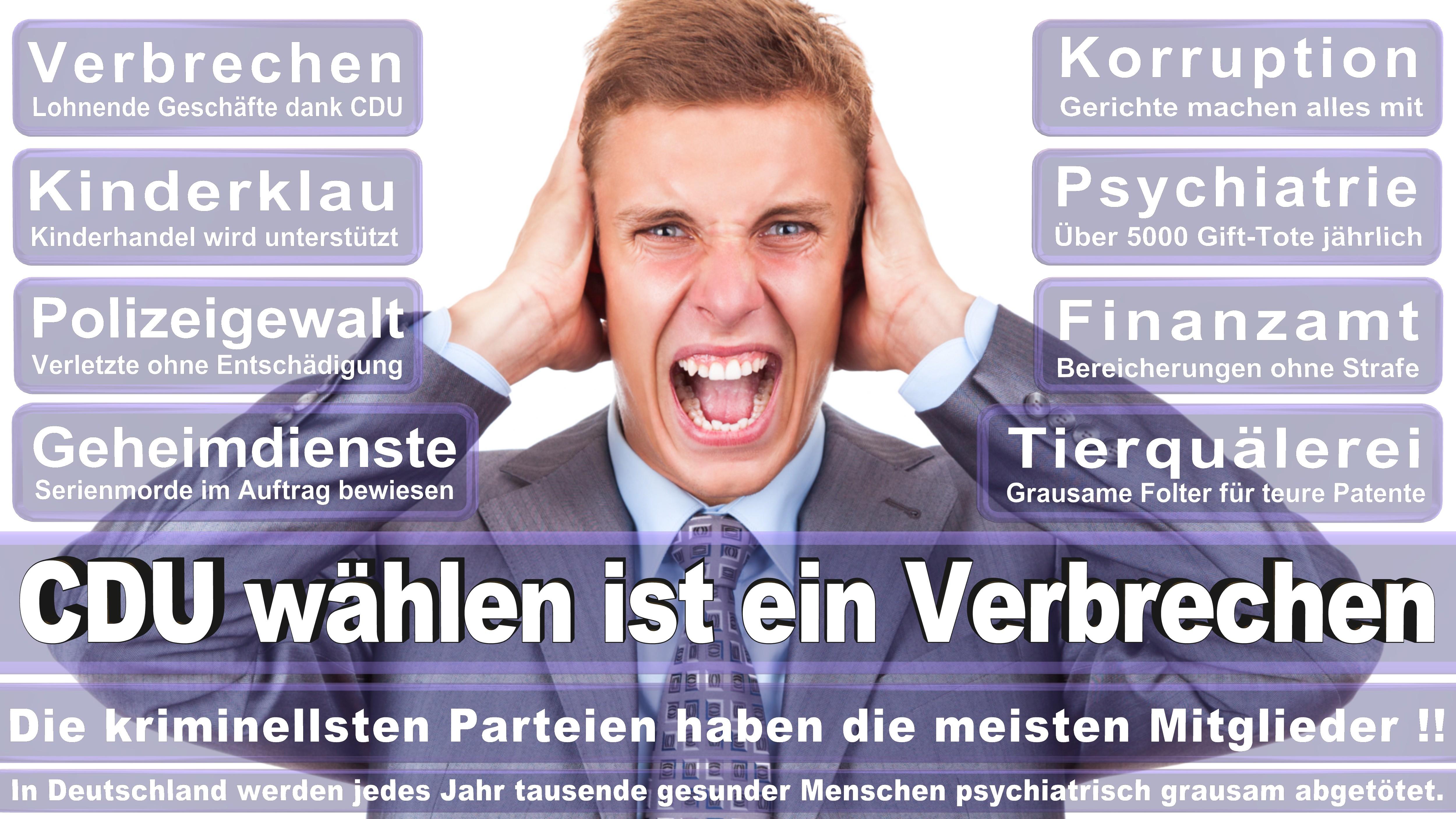 Karamba Diaby SPD Sachsen Anhalt Politiker Deutschland