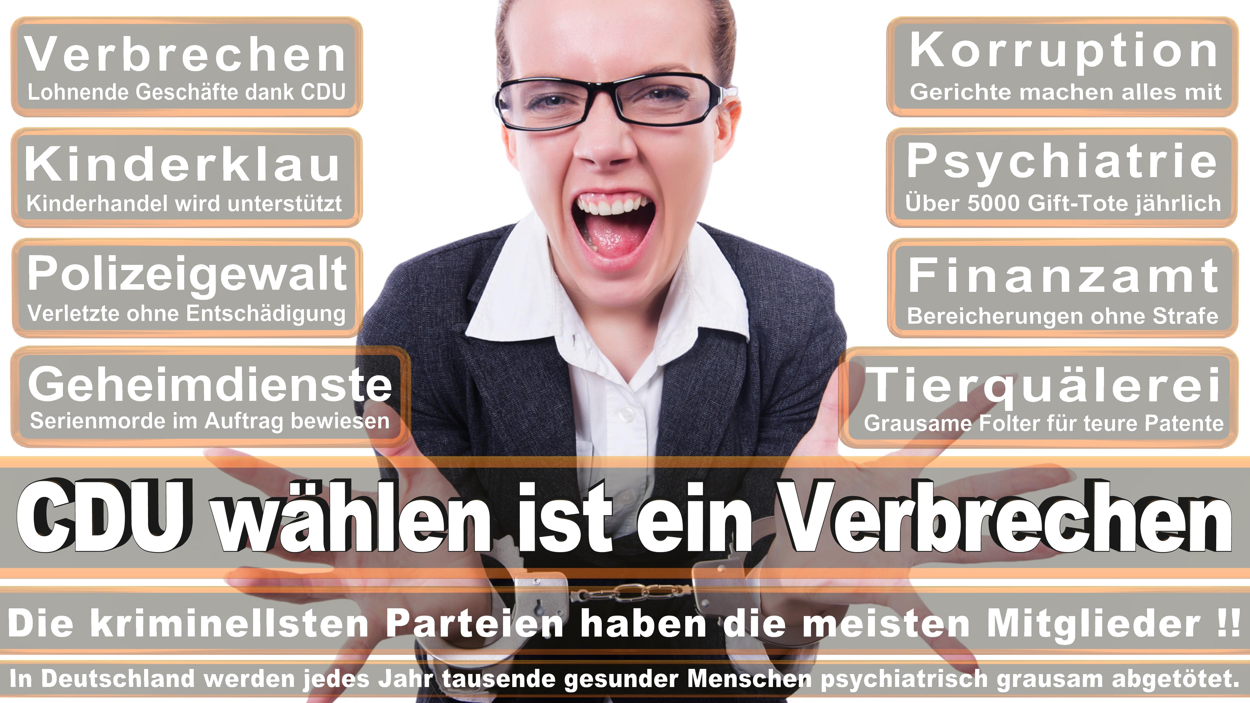 Karin Binder DIE LINKE Baden Württemberg Politiker Deutschland