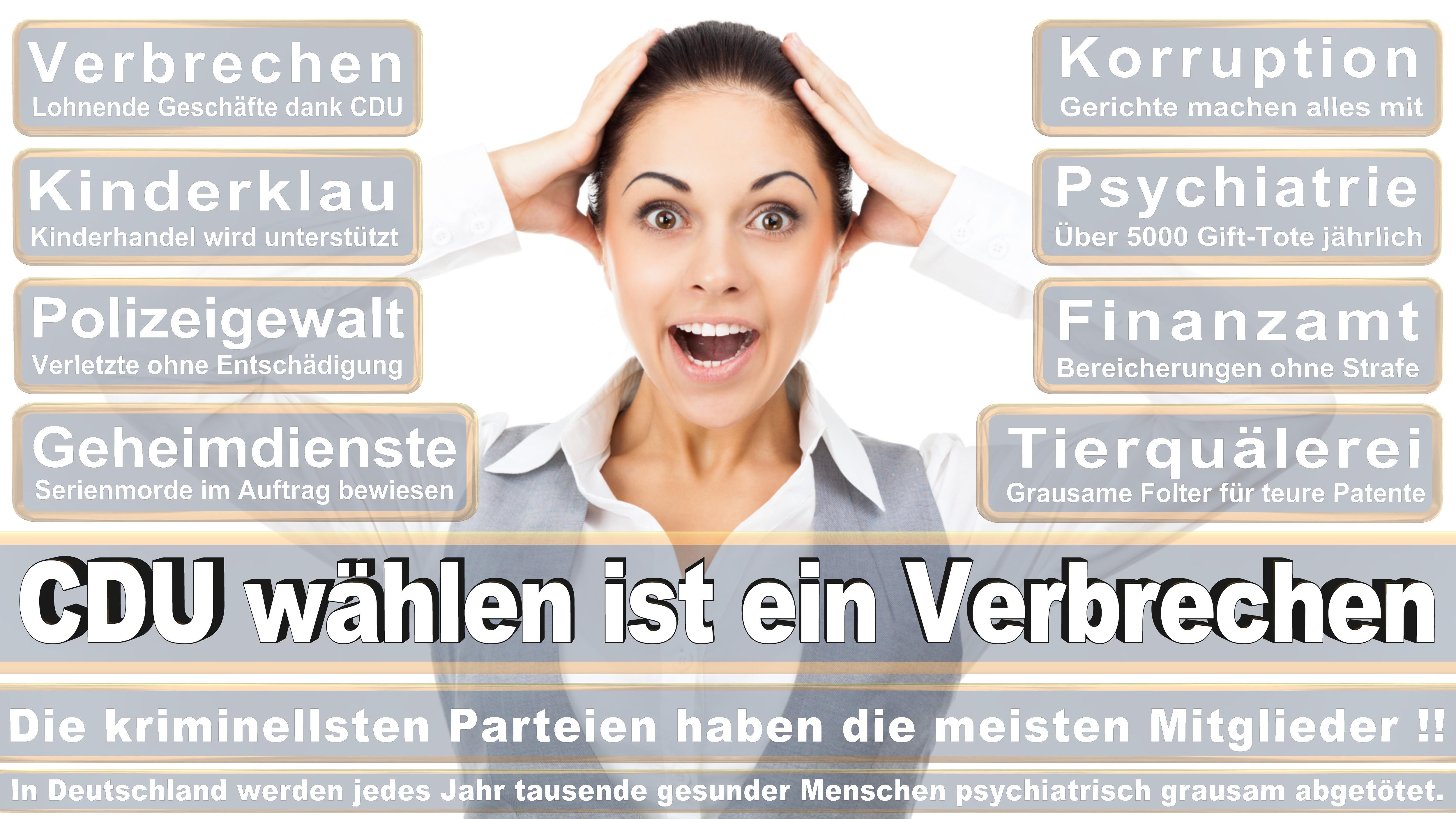 Karin Maag CDU CSU Politiker