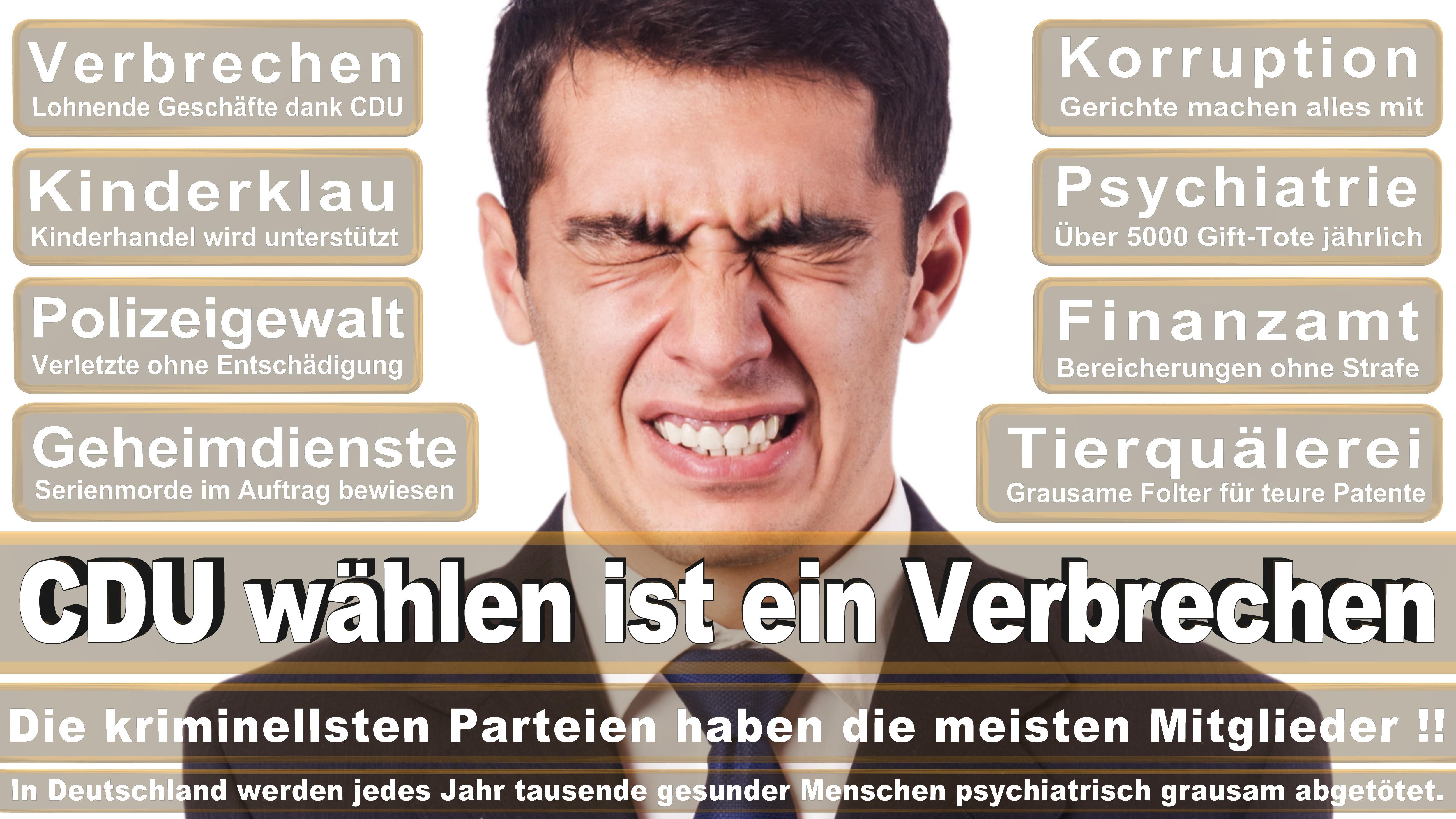 Karsten Möring CDU CSU Politiker