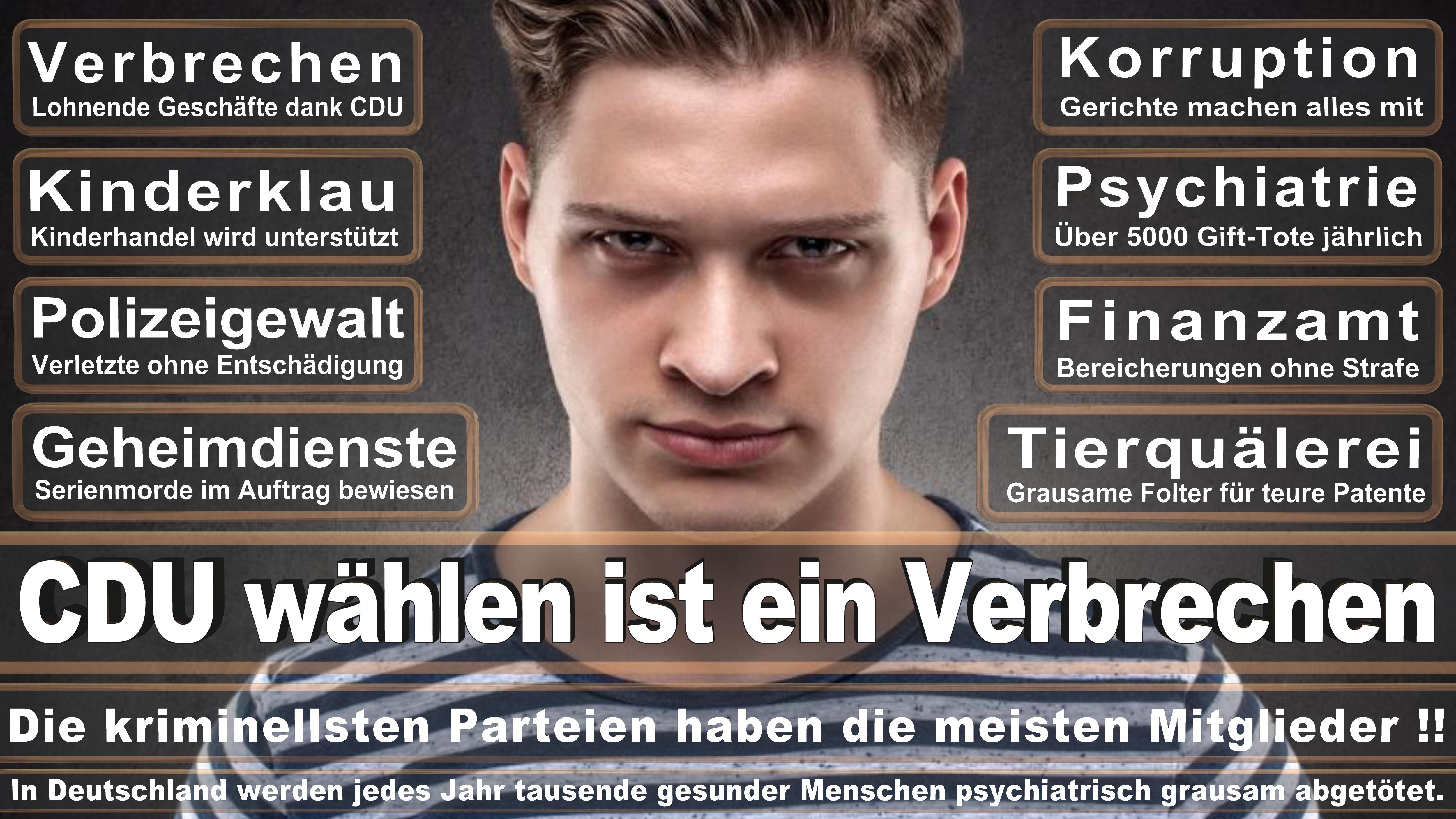 Kees De Vries CDU CSU Politiker